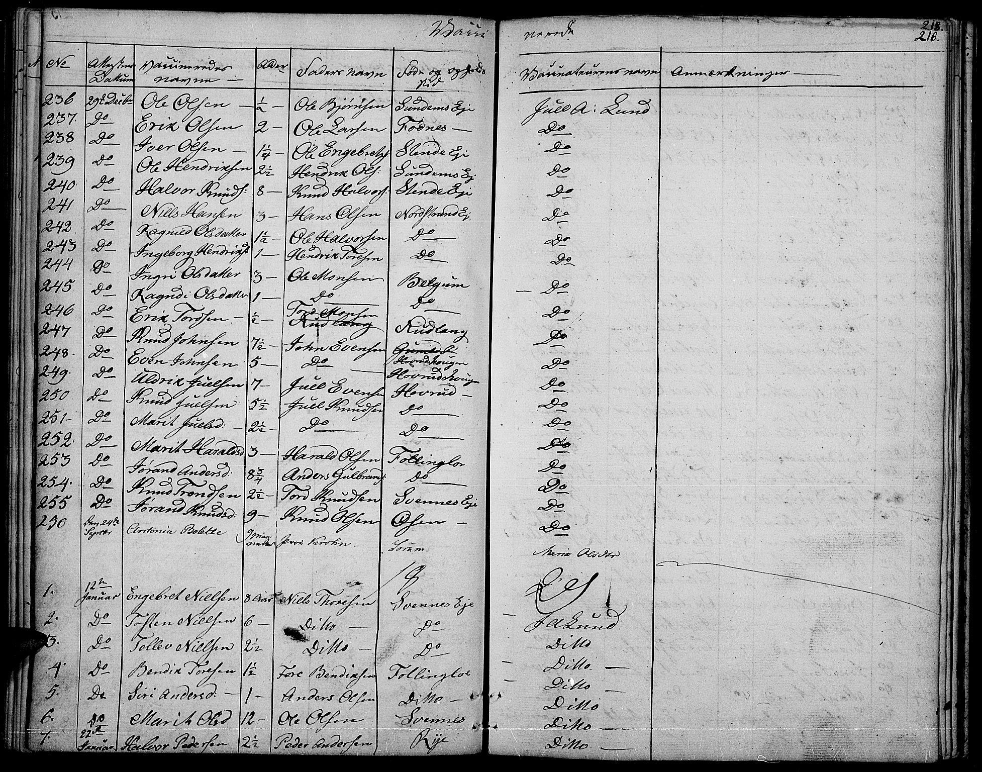 SAH, Nord-Aurdal prestekontor, Ministerialbok nr. 3, 1828-1841, s. 216
