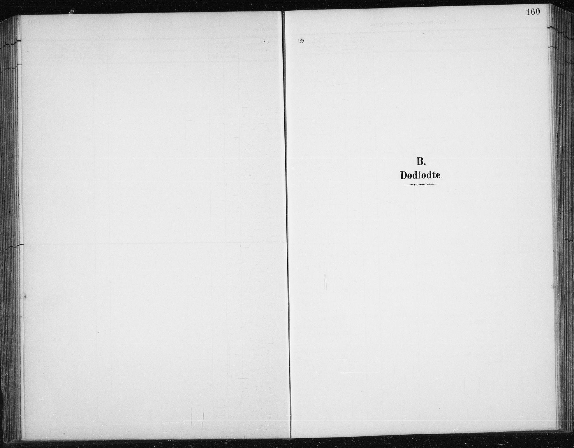 SAT, Ministerialprotokoller, klokkerbøker og fødselsregistre - Sør-Trøndelag, 674/L0876: Klokkerbok nr. 674C03, 1892-1912, s. 160