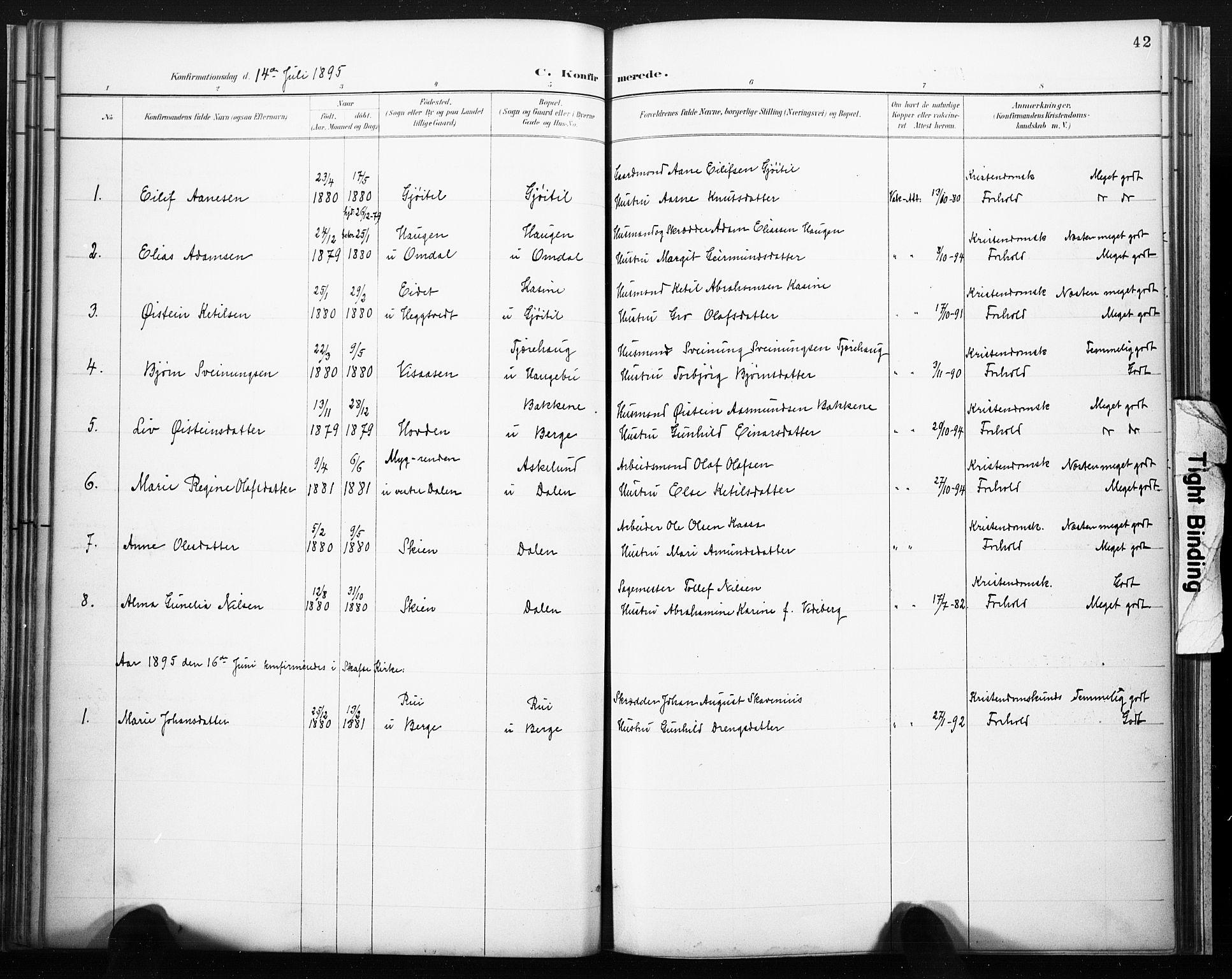 SAKO, Lårdal kirkebøker, F/Fb/L0002: Ministerialbok nr. II 2, 1887-1918, s. 42