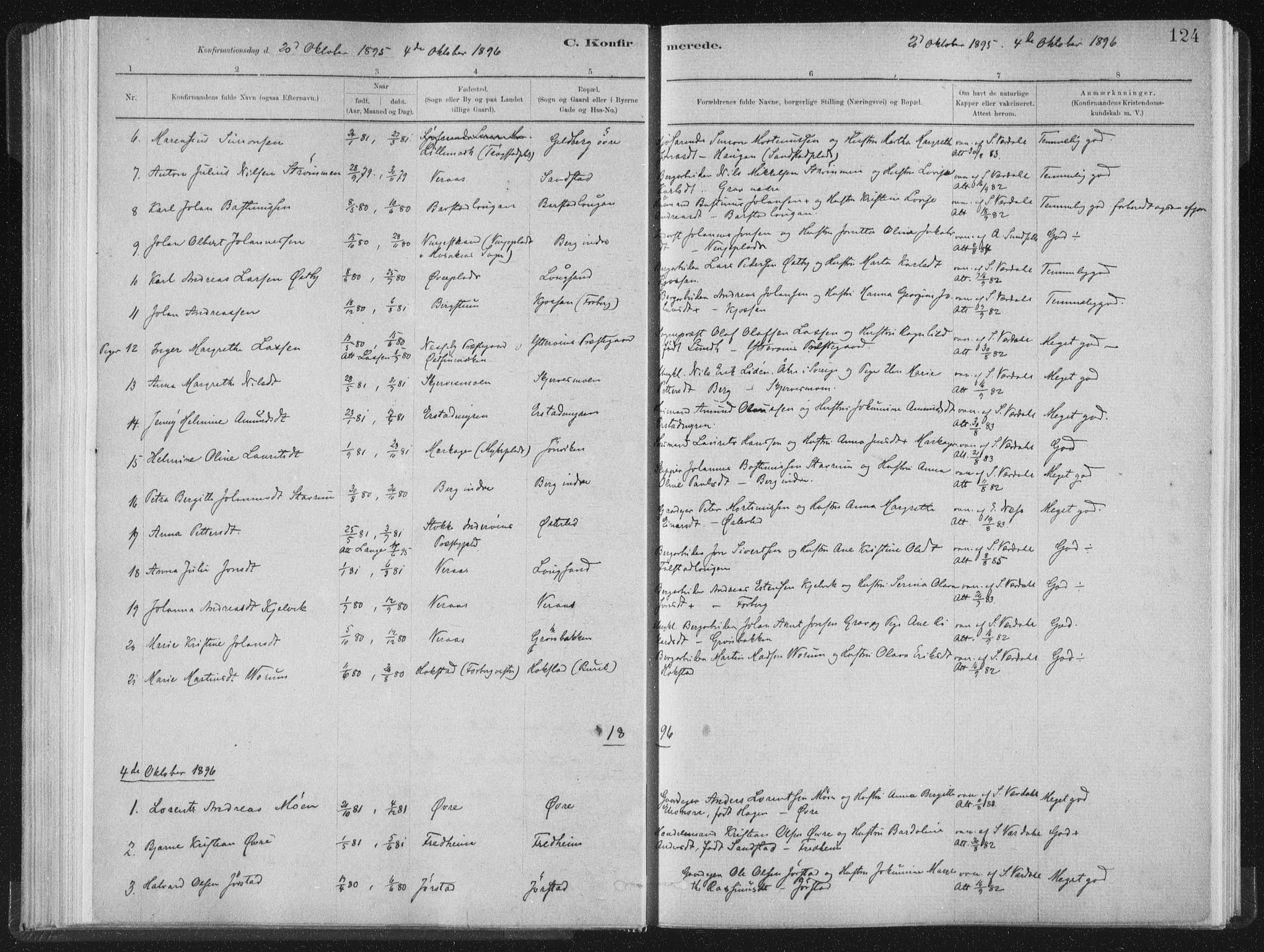 SAT, Ministerialprotokoller, klokkerbøker og fødselsregistre - Nord-Trøndelag, 722/L0220: Ministerialbok nr. 722A07, 1881-1908, s. 124