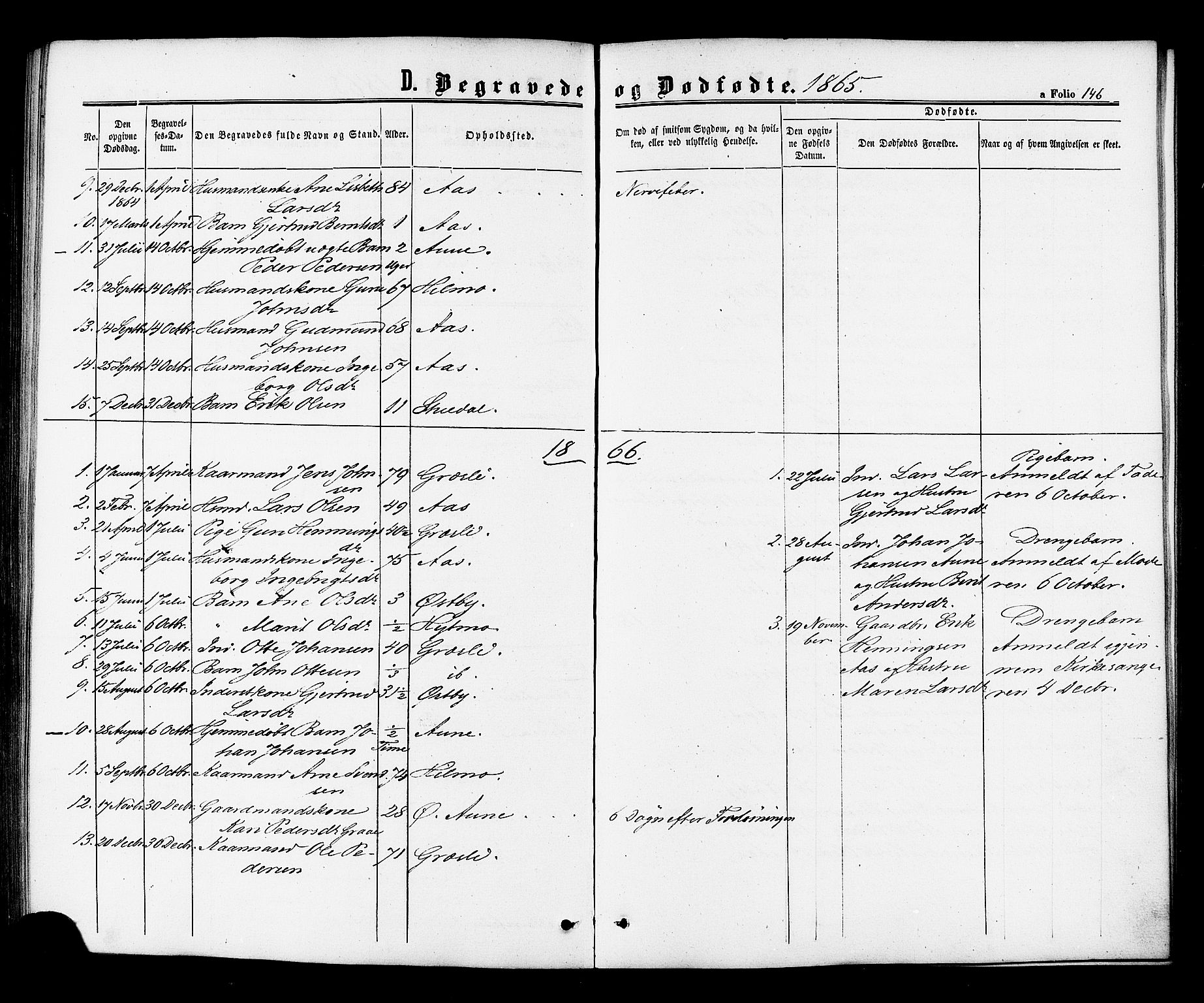 SAT, Ministerialprotokoller, klokkerbøker og fødselsregistre - Sør-Trøndelag, 698/L1163: Ministerialbok nr. 698A01, 1862-1887, s. 146