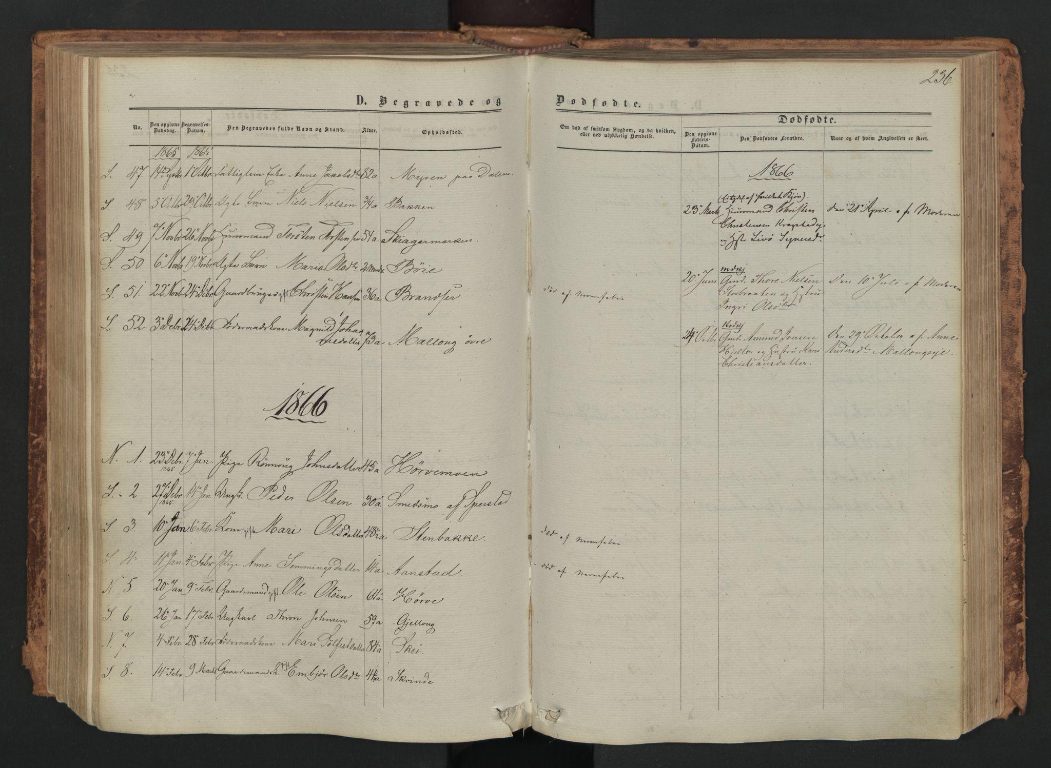 SAH, Skjåk prestekontor, Ministerialbok nr. 1, 1863-1879, s. 236