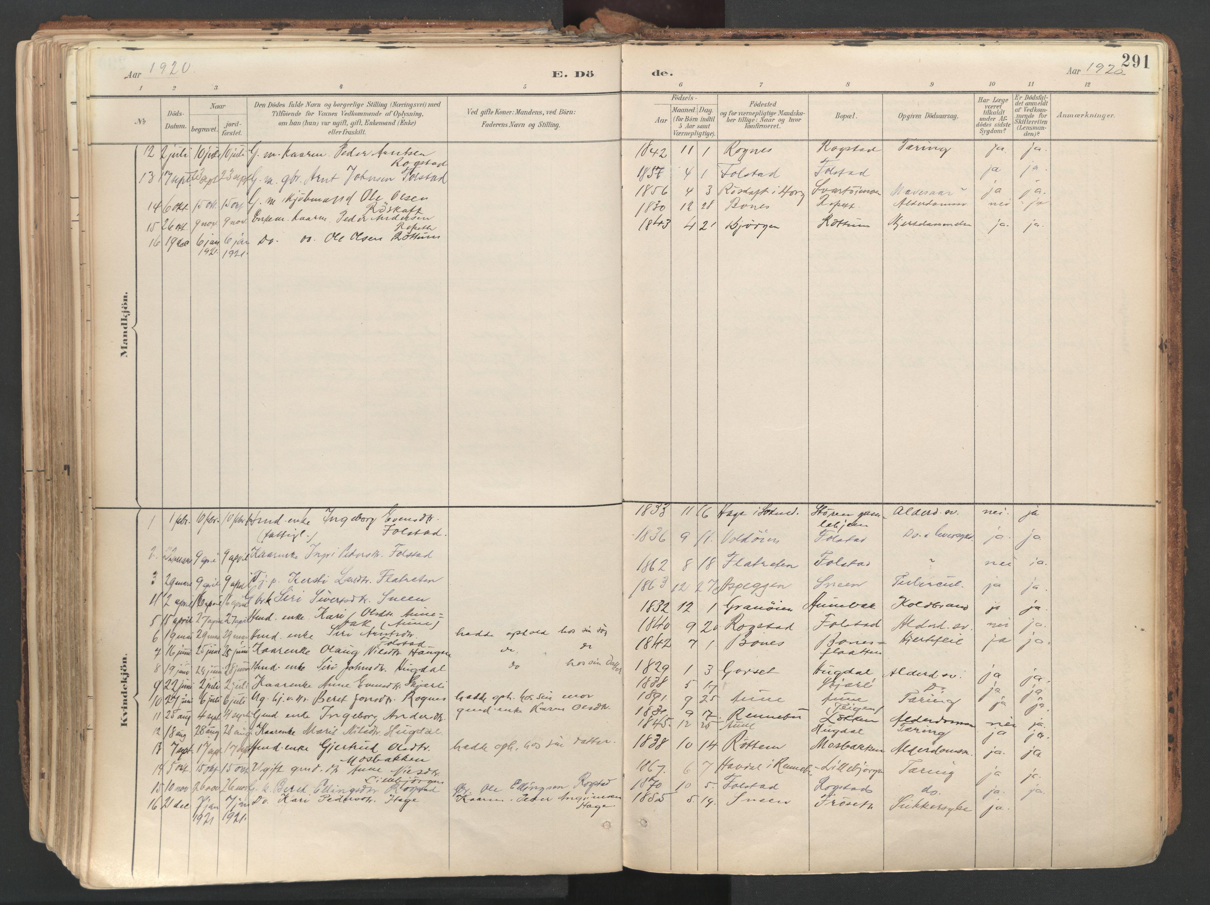 SAT, Ministerialprotokoller, klokkerbøker og fødselsregistre - Sør-Trøndelag, 687/L1004: Ministerialbok nr. 687A10, 1891-1923, s. 291