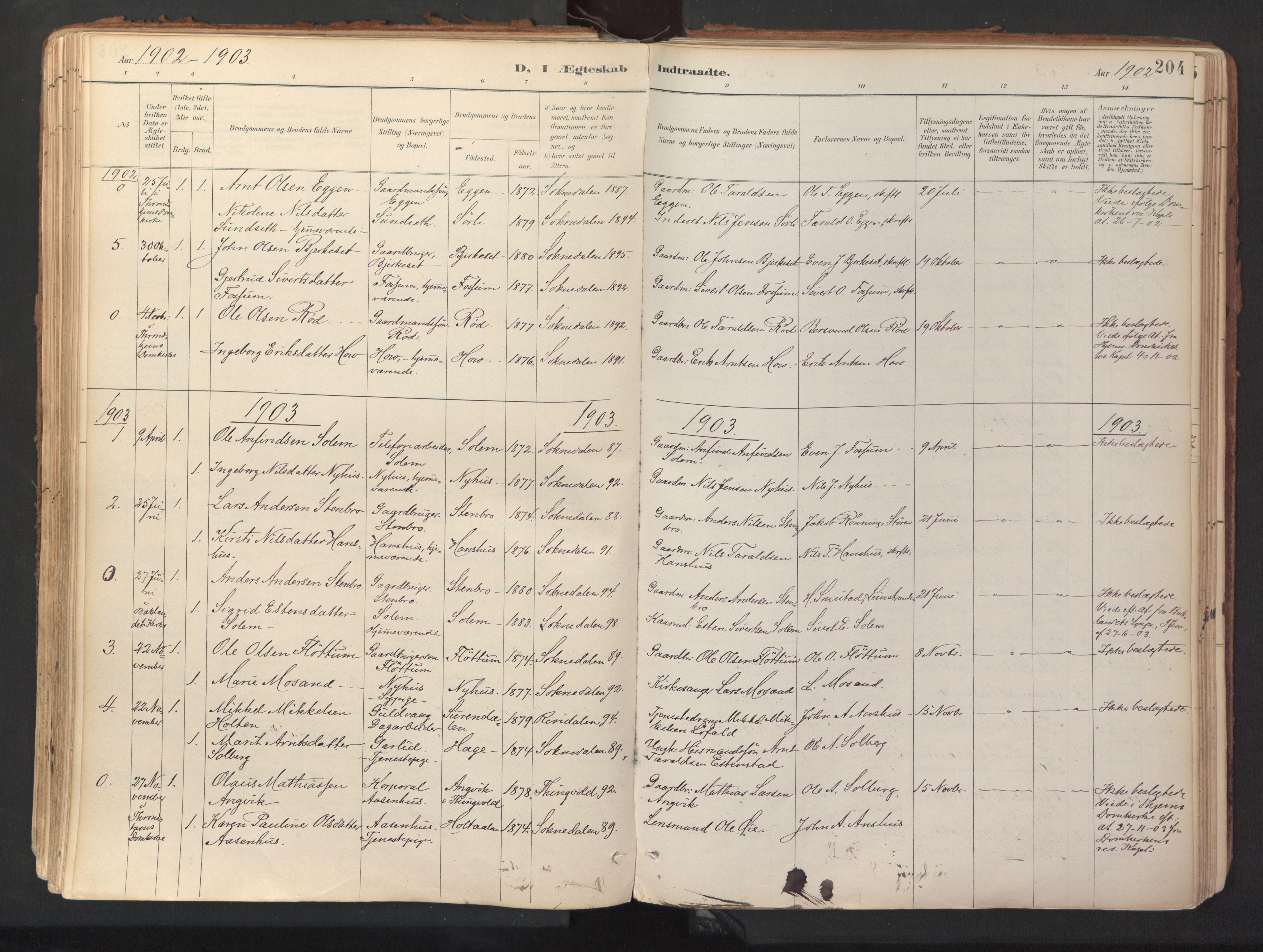 SAT, Ministerialprotokoller, klokkerbøker og fødselsregistre - Sør-Trøndelag, 689/L1041: Ministerialbok nr. 689A06, 1891-1923, s. 204