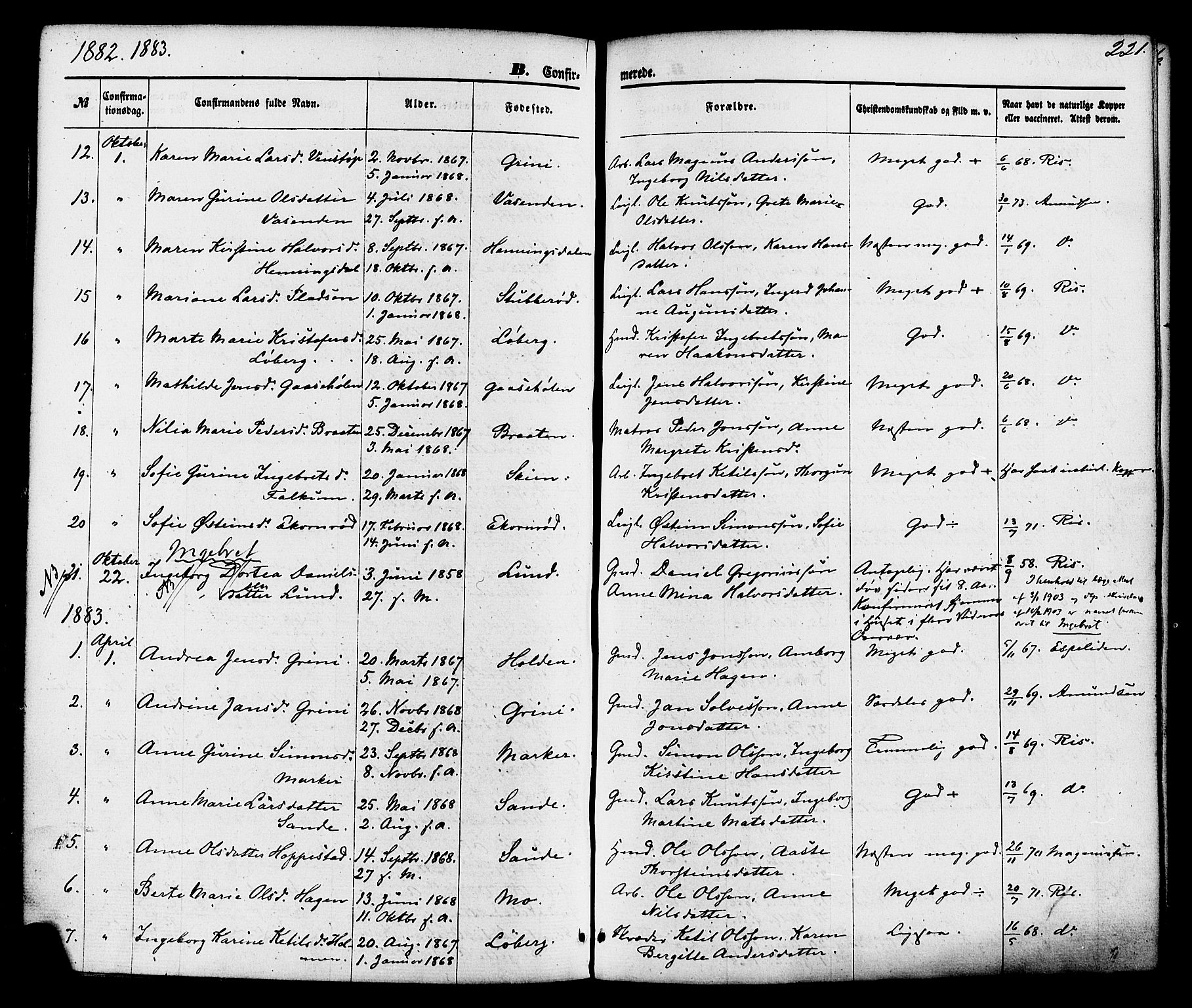 SAKO, Gjerpen kirkebøker, F/Fa/L0009: Ministerialbok nr. 9, 1872-1885, s. 221