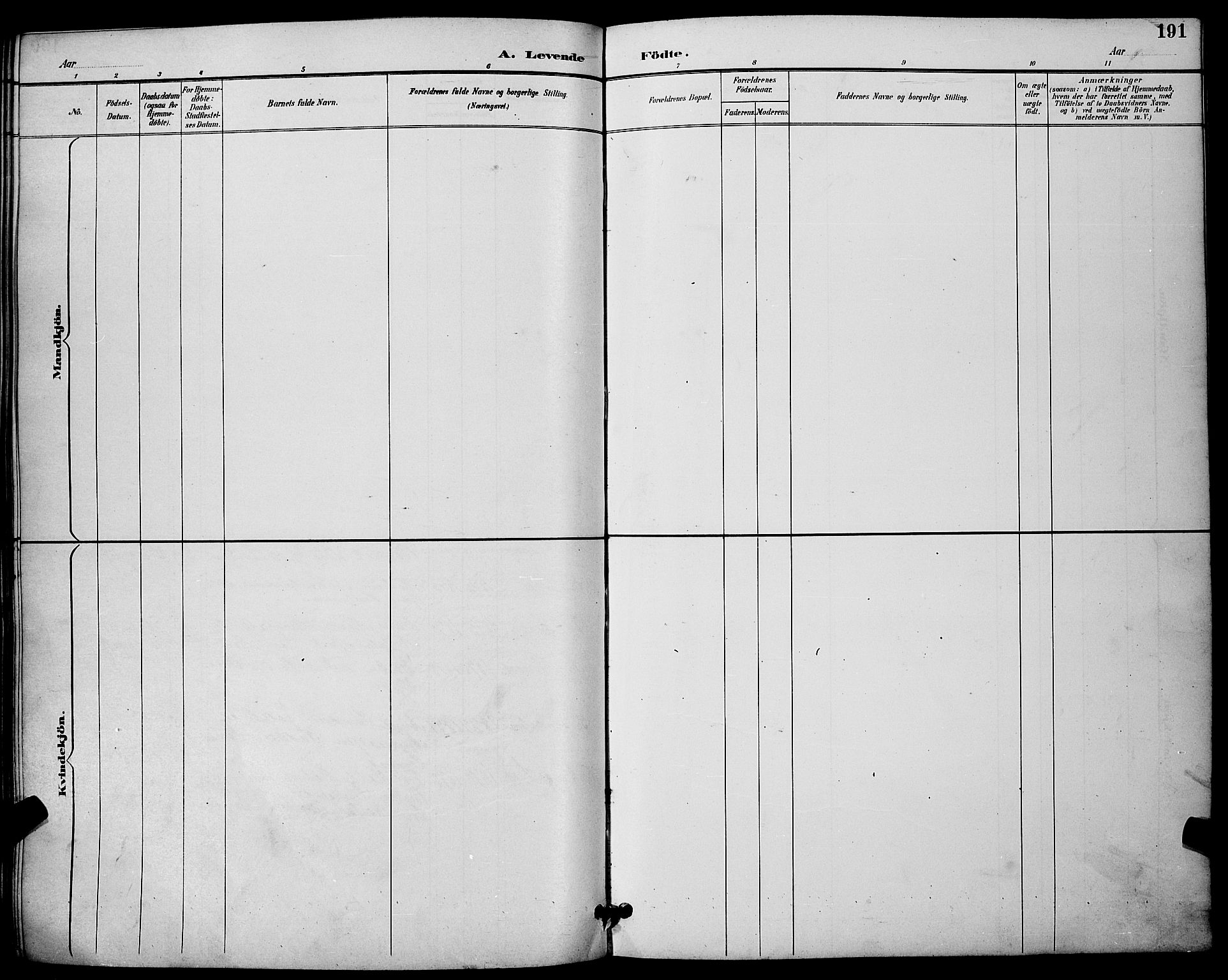 SAKO, Skien kirkebøker, G/Ga/L0007: Klokkerbok nr. 7, 1891-1900, s. 191