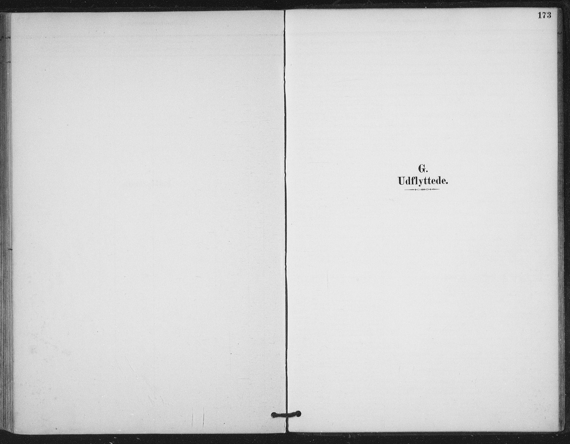 SAT, Ministerialprotokoller, klokkerbøker og fødselsregistre - Nord-Trøndelag, 780/L0644: Ministerialbok nr. 780A08, 1886-1903, s. 173