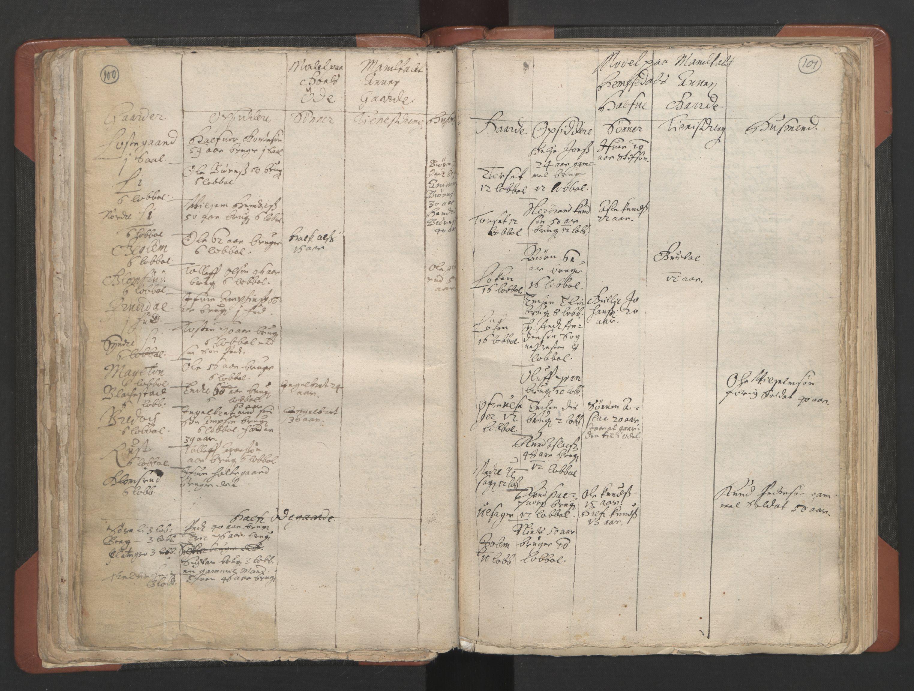 RA, Sogneprestenes manntall 1664-1666, nr. 8: Valdres prosti, 1664-1666, s. 100-101