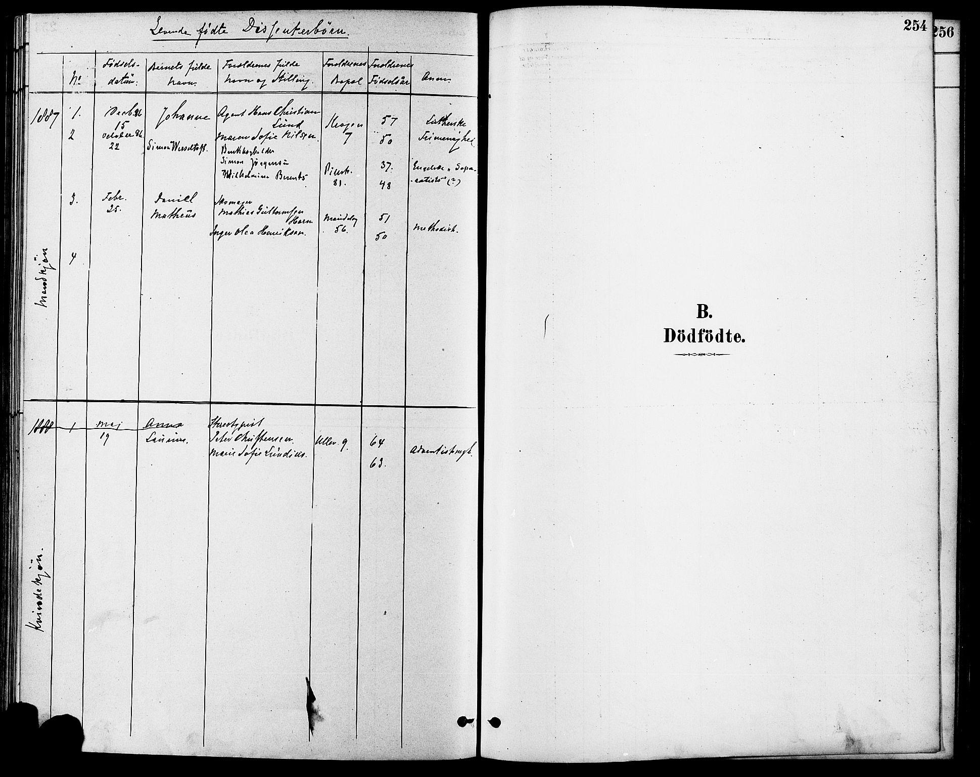 SAO, Gamle Aker prestekontor Kirkebøker, F/L0006: Ministerialbok nr. 6, 1880-1887, s. 254
