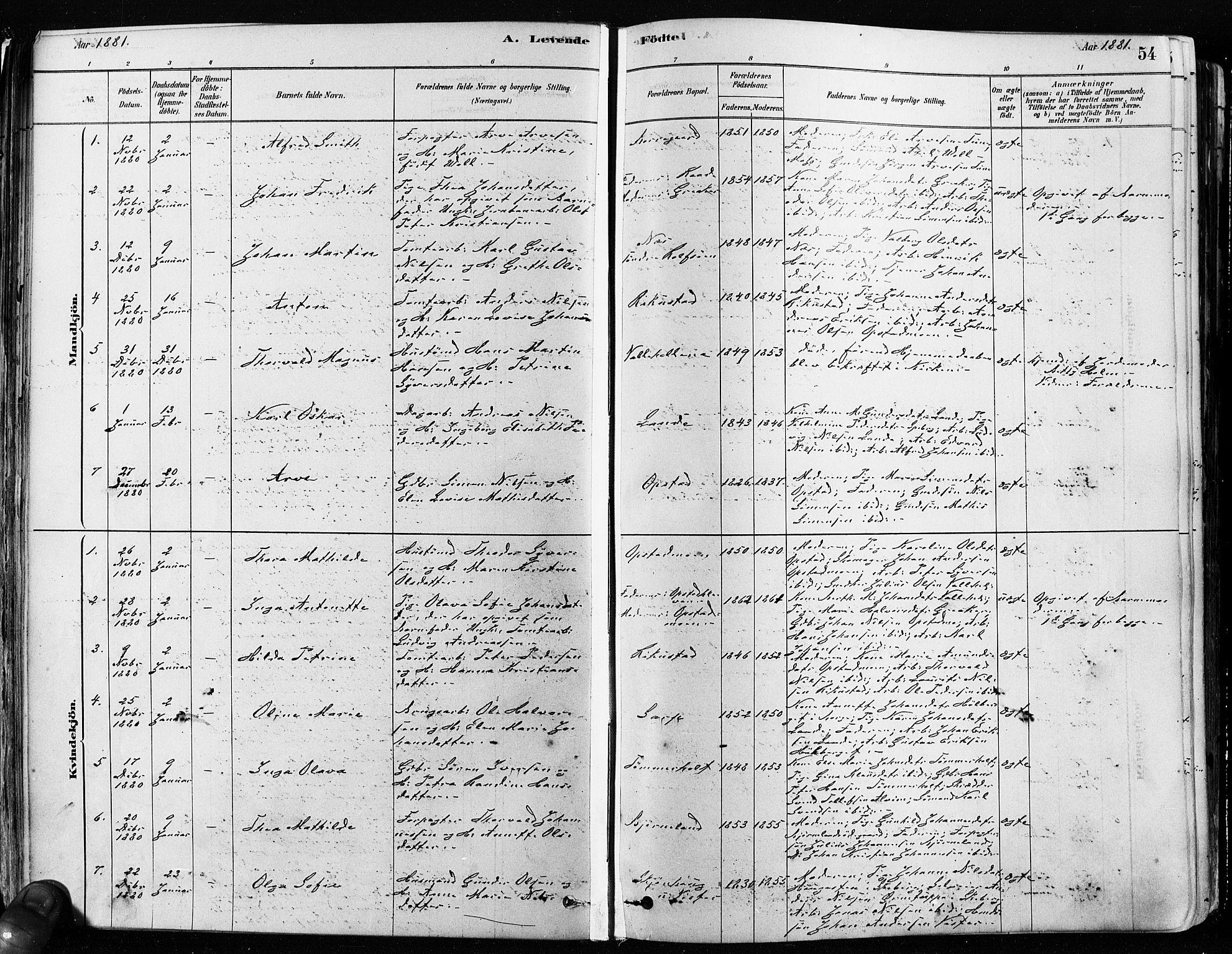 SAO, Tune prestekontor Kirkebøker, F/Fa/L0017: Ministerialbok nr. 17, 1878-1887, s. 54