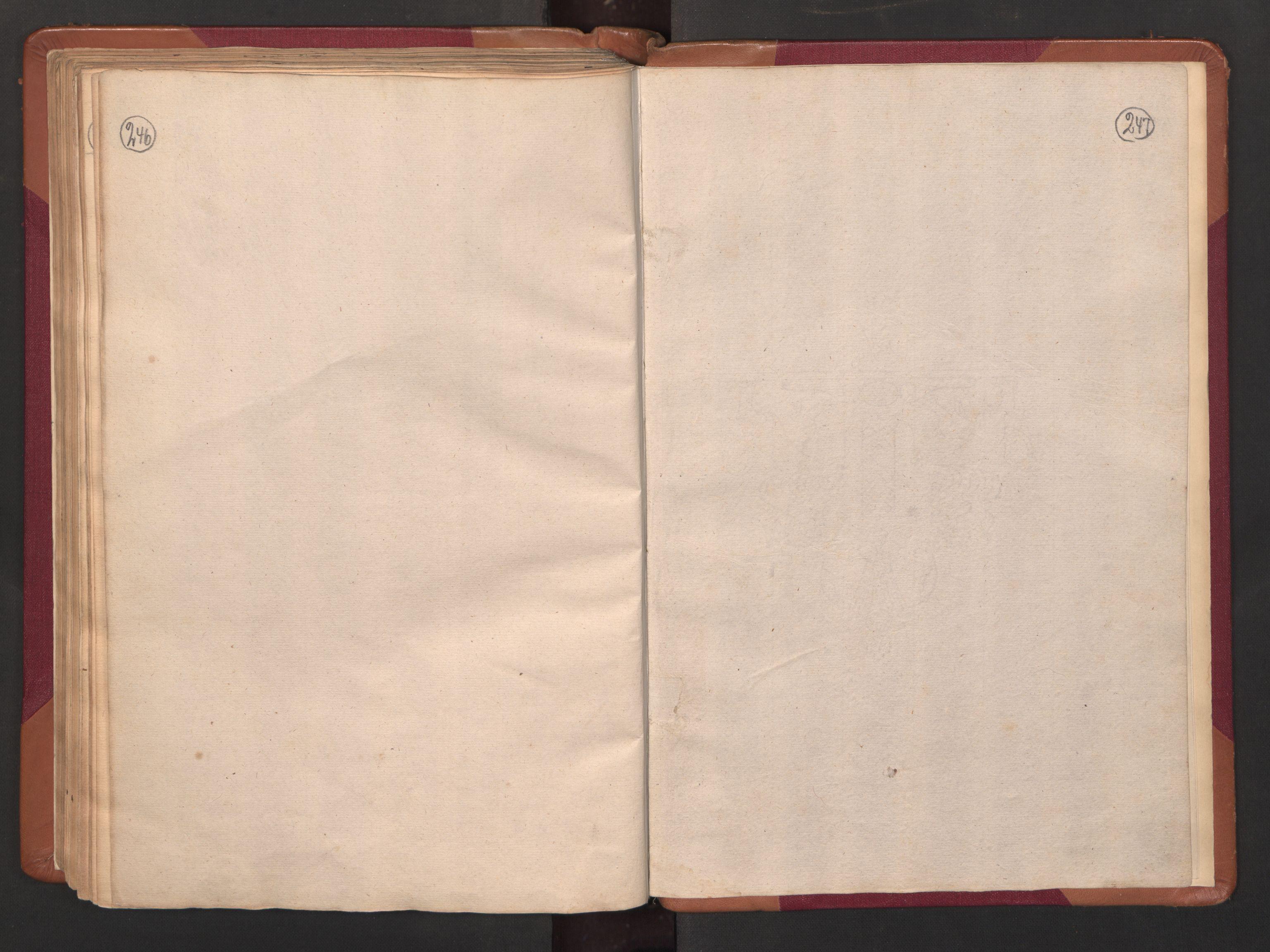RA, Manntallet 1701, nr. 14: Strinda og Selbu fogderi, 1701, s. 246-247