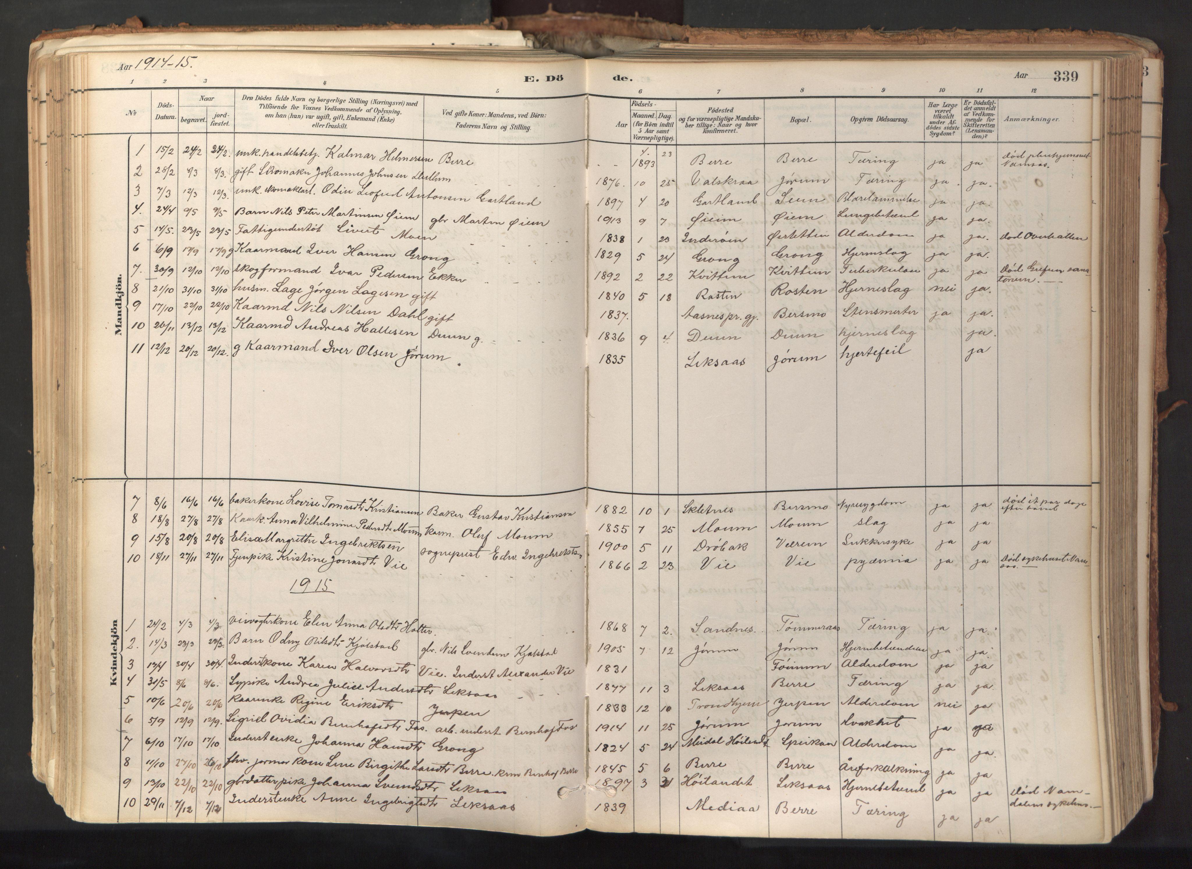 SAT, Ministerialprotokoller, klokkerbøker og fødselsregistre - Nord-Trøndelag, 758/L0519: Ministerialbok nr. 758A04, 1880-1926, s. 339