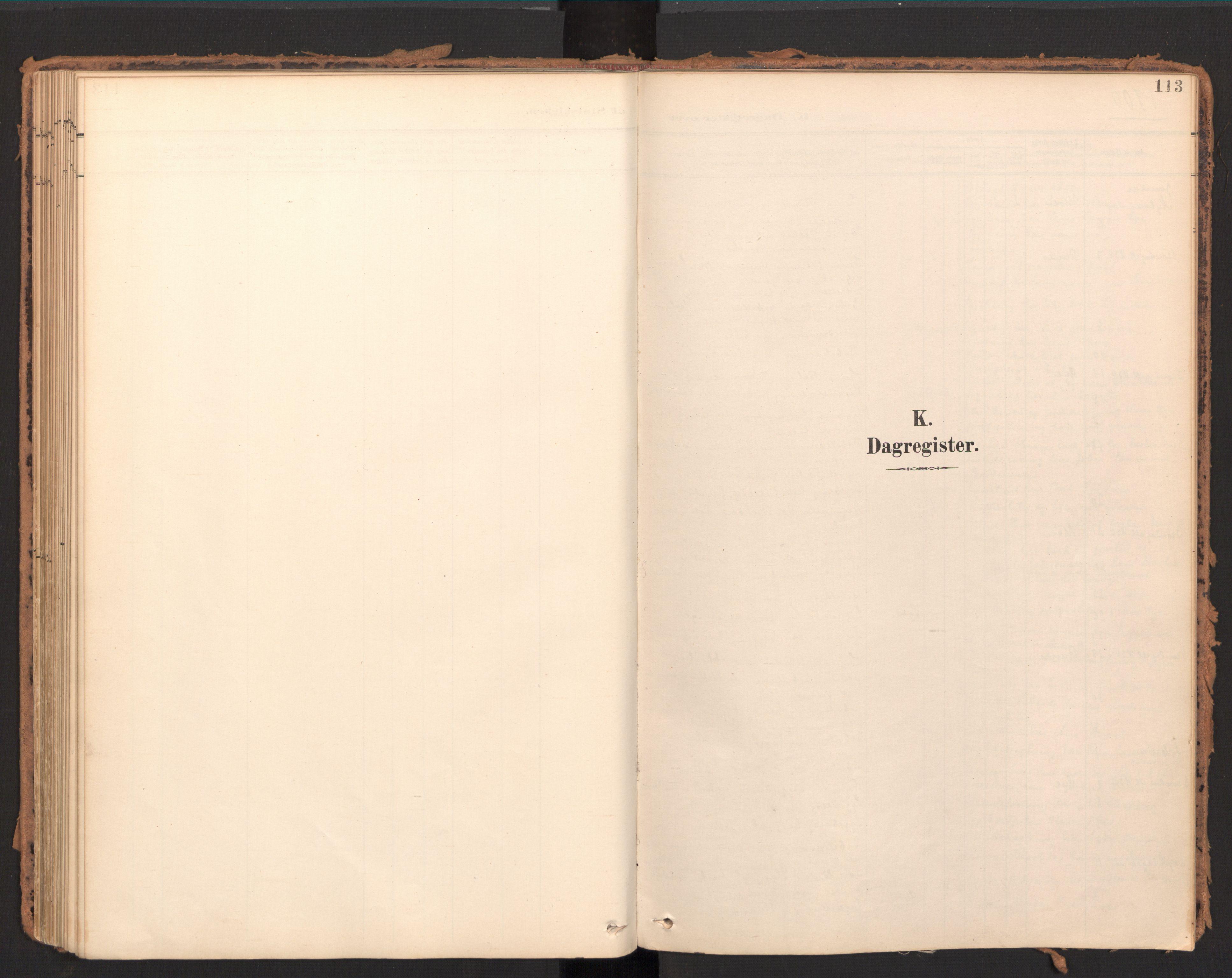 SAT, Ministerialprotokoller, klokkerbøker og fødselsregistre - Møre og Romsdal, 595/L1048: Ministerialbok nr. 595A10, 1900-1917, s. 113