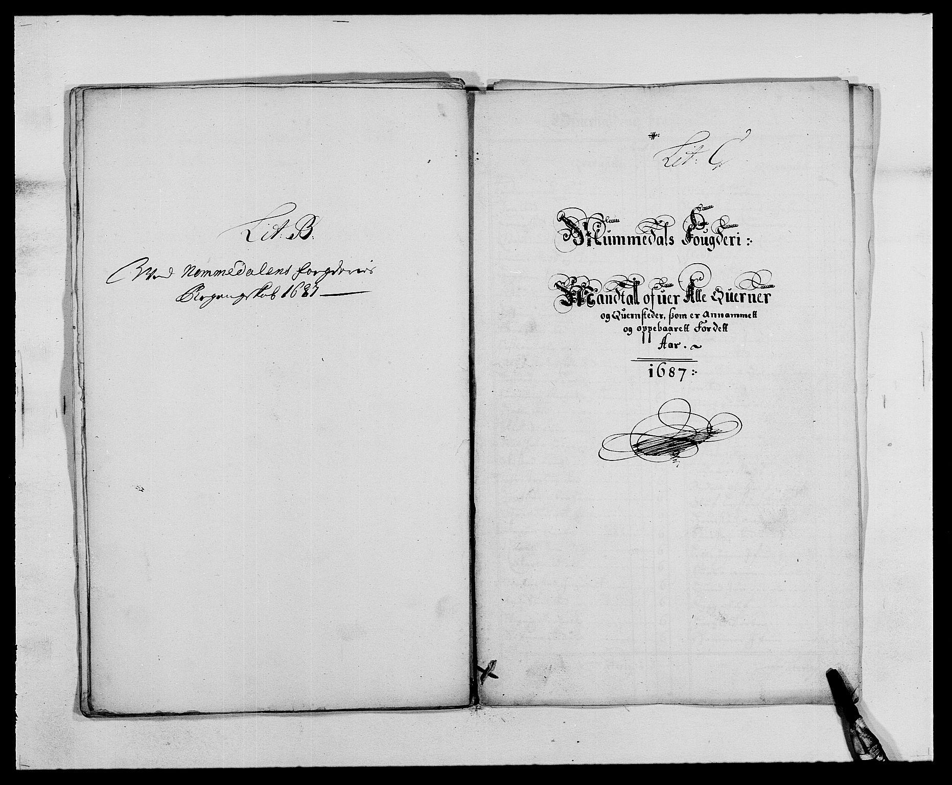 RA, Rentekammeret inntil 1814, Reviderte regnskaper, Fogderegnskap, R64/L4422: Fogderegnskap Namdal, 1687-1689, s. 12