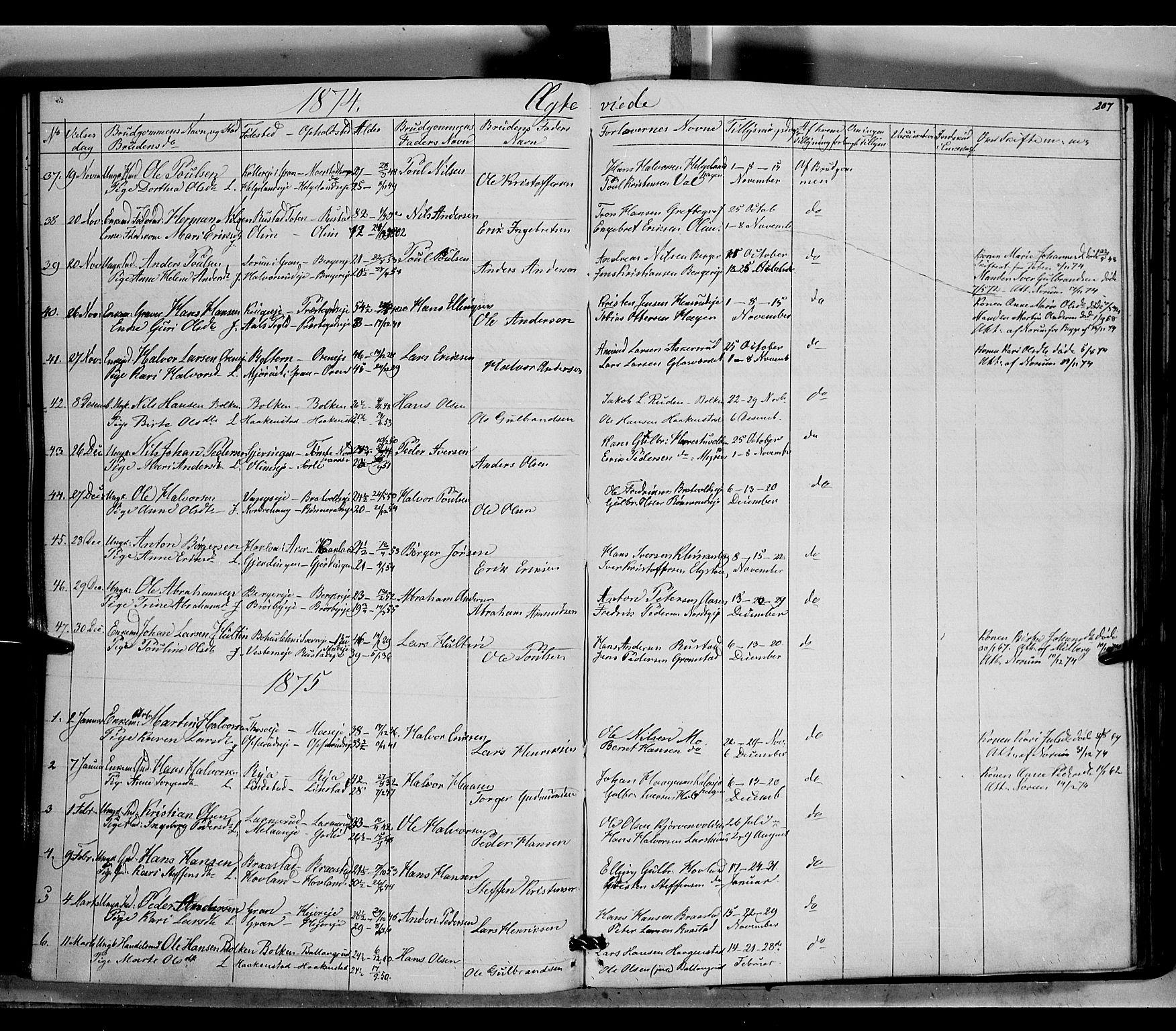 SAH, Jevnaker prestekontor, Ministerialbok nr. 7, 1858-1876, s. 207