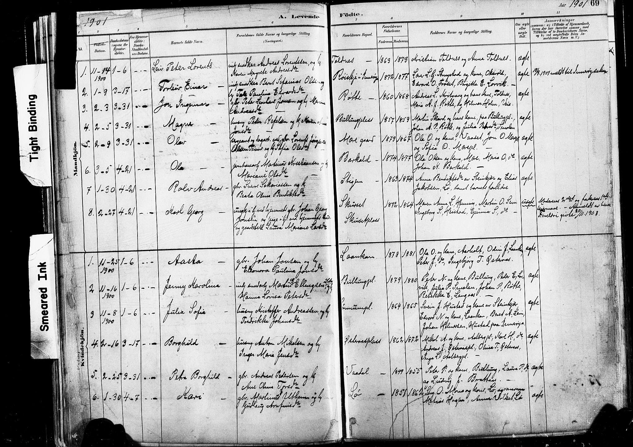 SAT, Ministerialprotokoller, klokkerbøker og fødselsregistre - Nord-Trøndelag, 735/L0351: Ministerialbok nr. 735A10, 1884-1908, s. 69