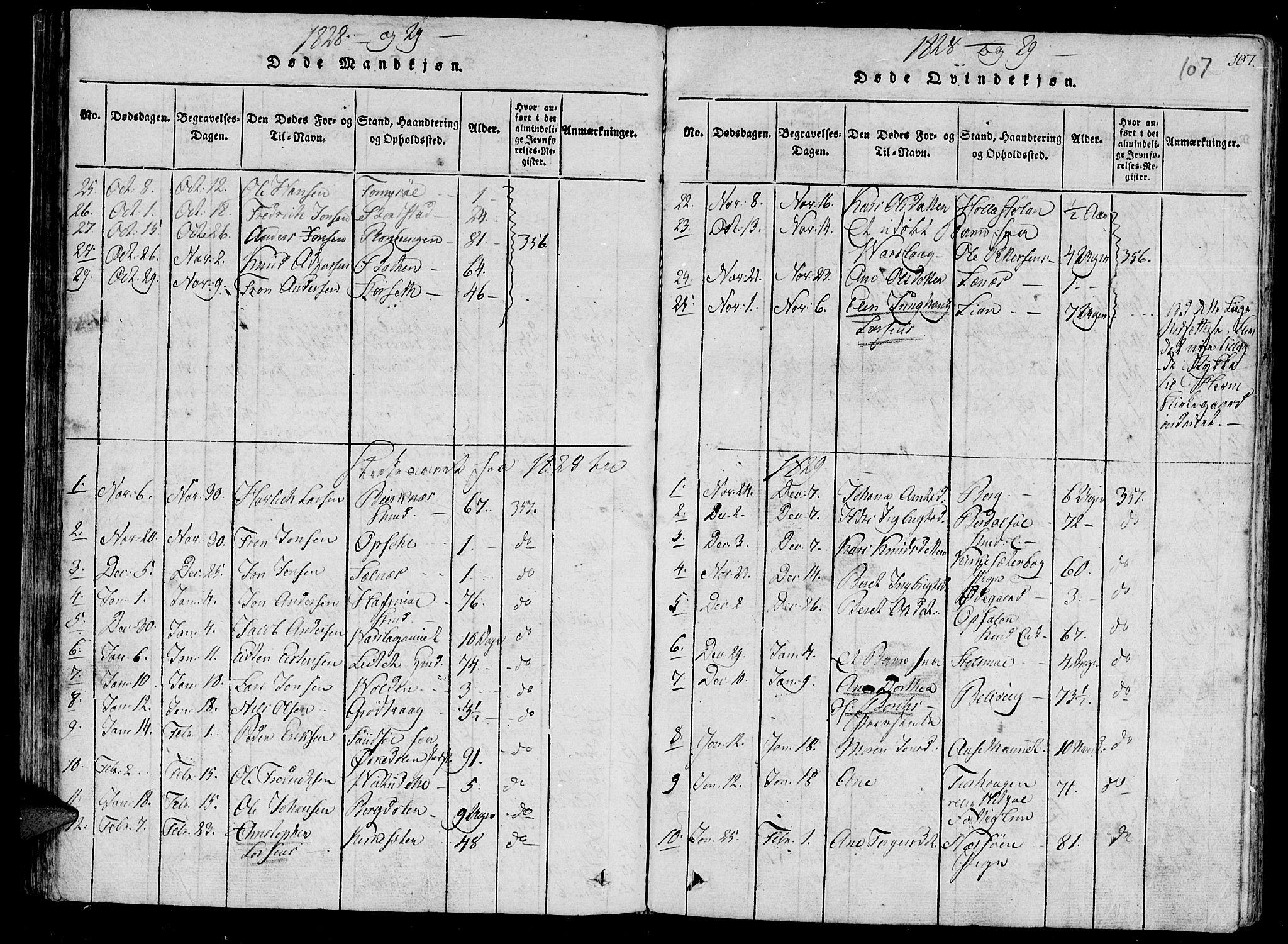SAT, Ministerialprotokoller, klokkerbøker og fødselsregistre - Sør-Trøndelag, 630/L0491: Ministerialbok nr. 630A04, 1818-1830, s. 107