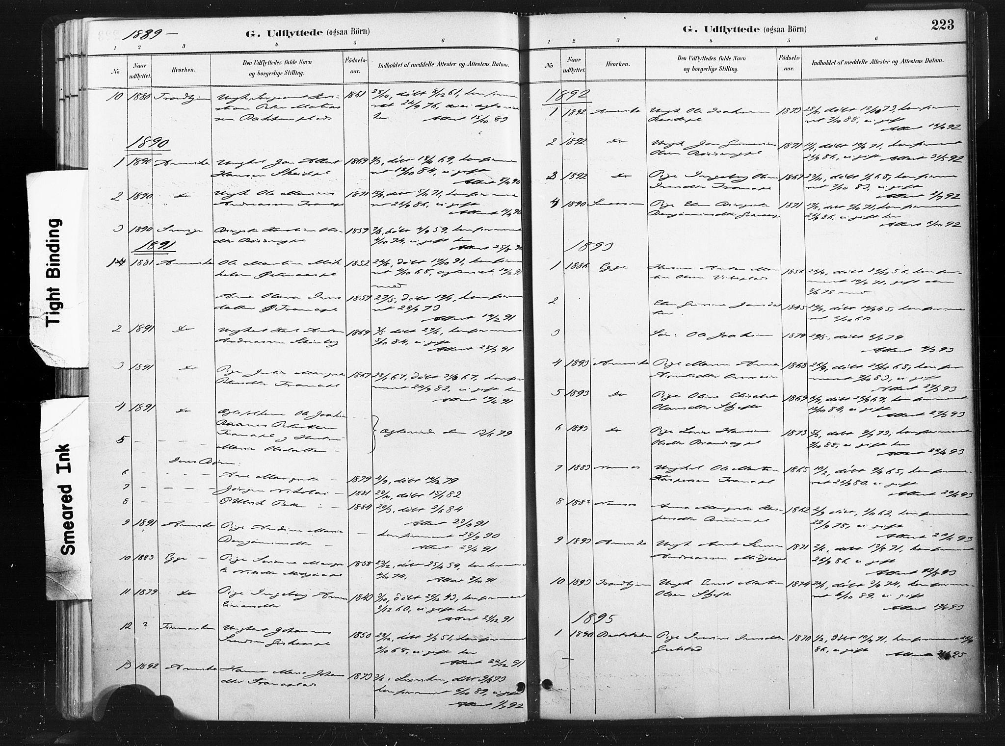 SAT, Ministerialprotokoller, klokkerbøker og fødselsregistre - Nord-Trøndelag, 736/L0361: Ministerialbok nr. 736A01, 1884-1906, s. 223