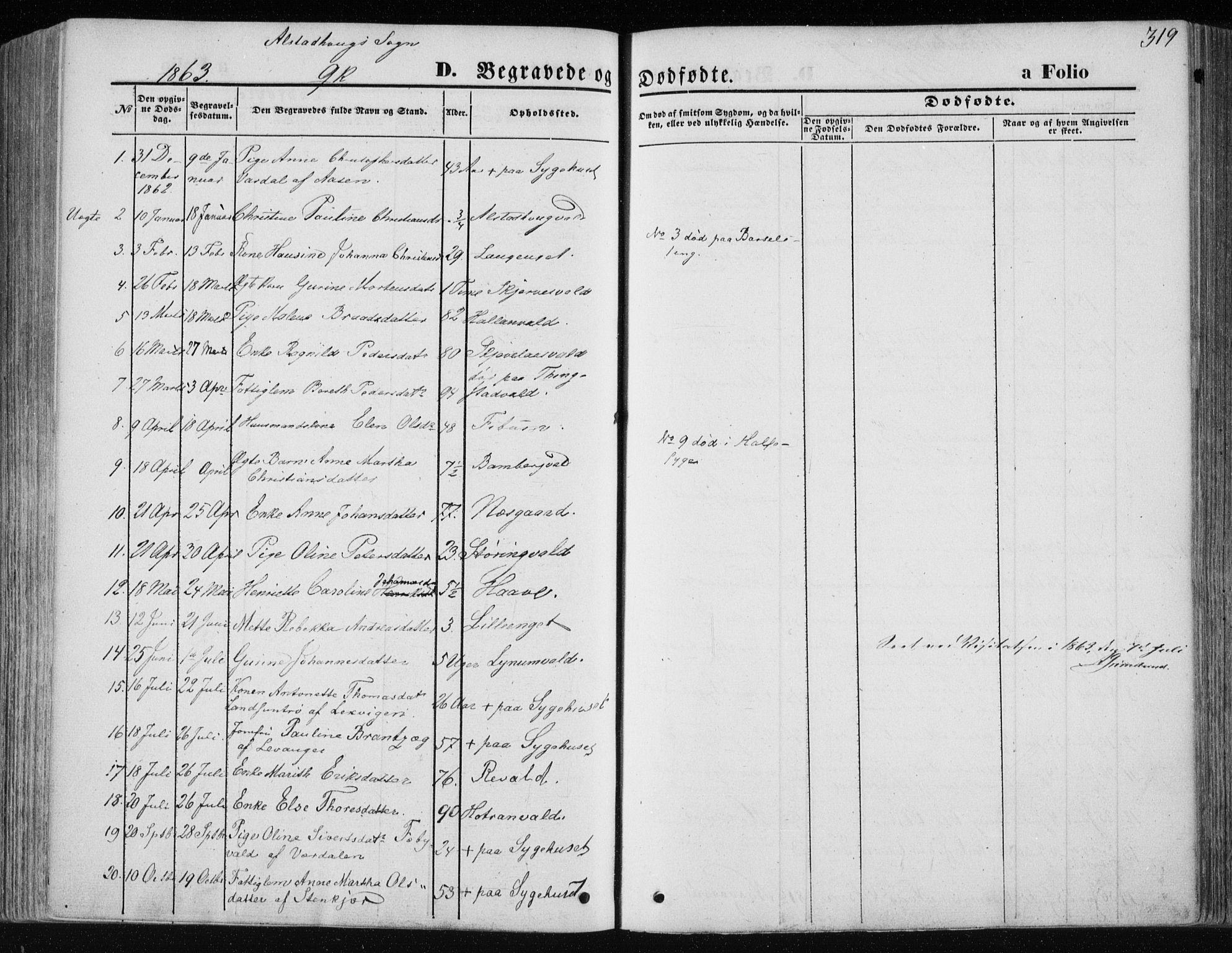 SAT, Ministerialprotokoller, klokkerbøker og fødselsregistre - Nord-Trøndelag, 717/L0157: Ministerialbok nr. 717A08 /1, 1863-1877, s. 319