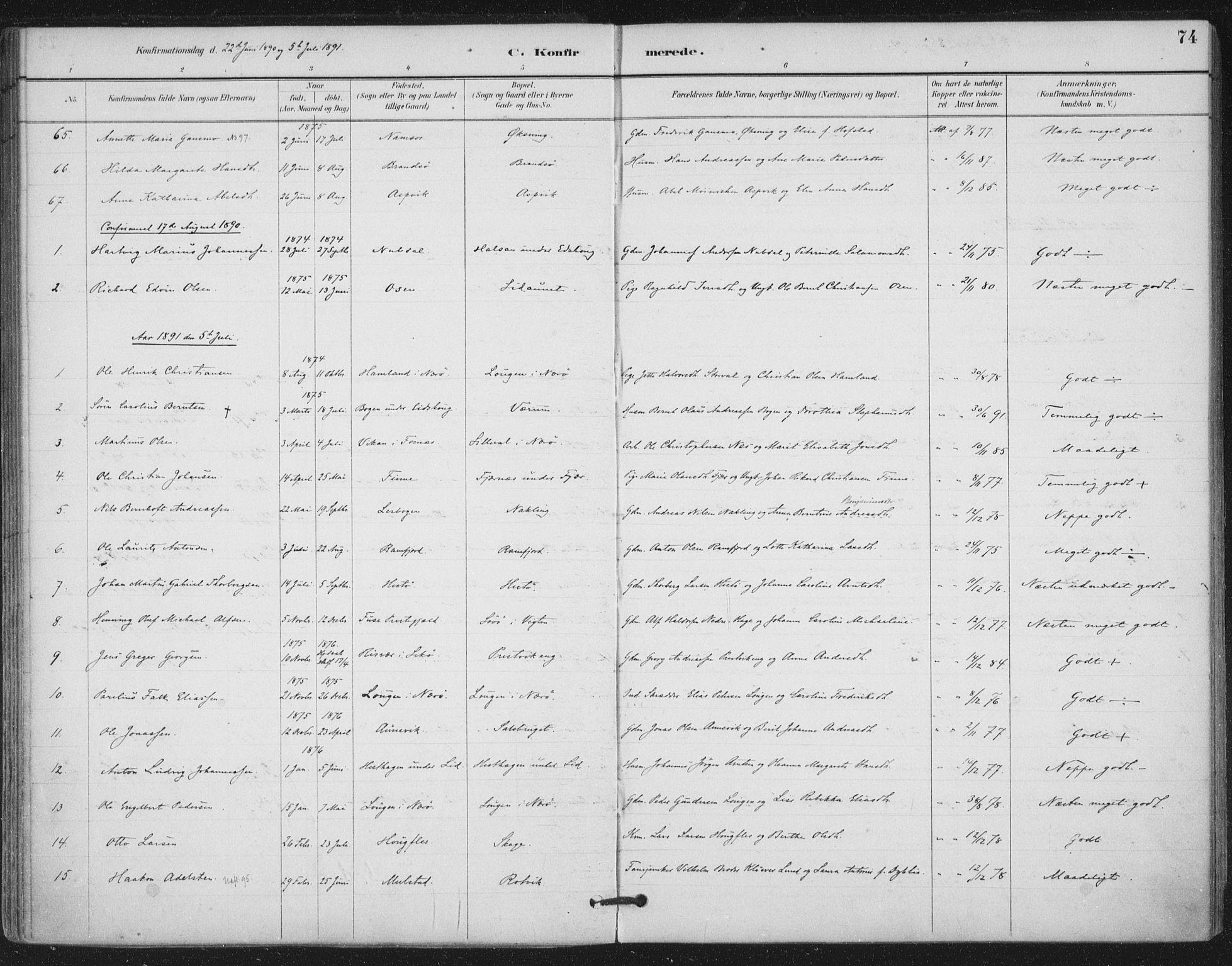 SAT, Ministerialprotokoller, klokkerbøker og fødselsregistre - Nord-Trøndelag, 780/L0644: Ministerialbok nr. 780A08, 1886-1903, s. 74