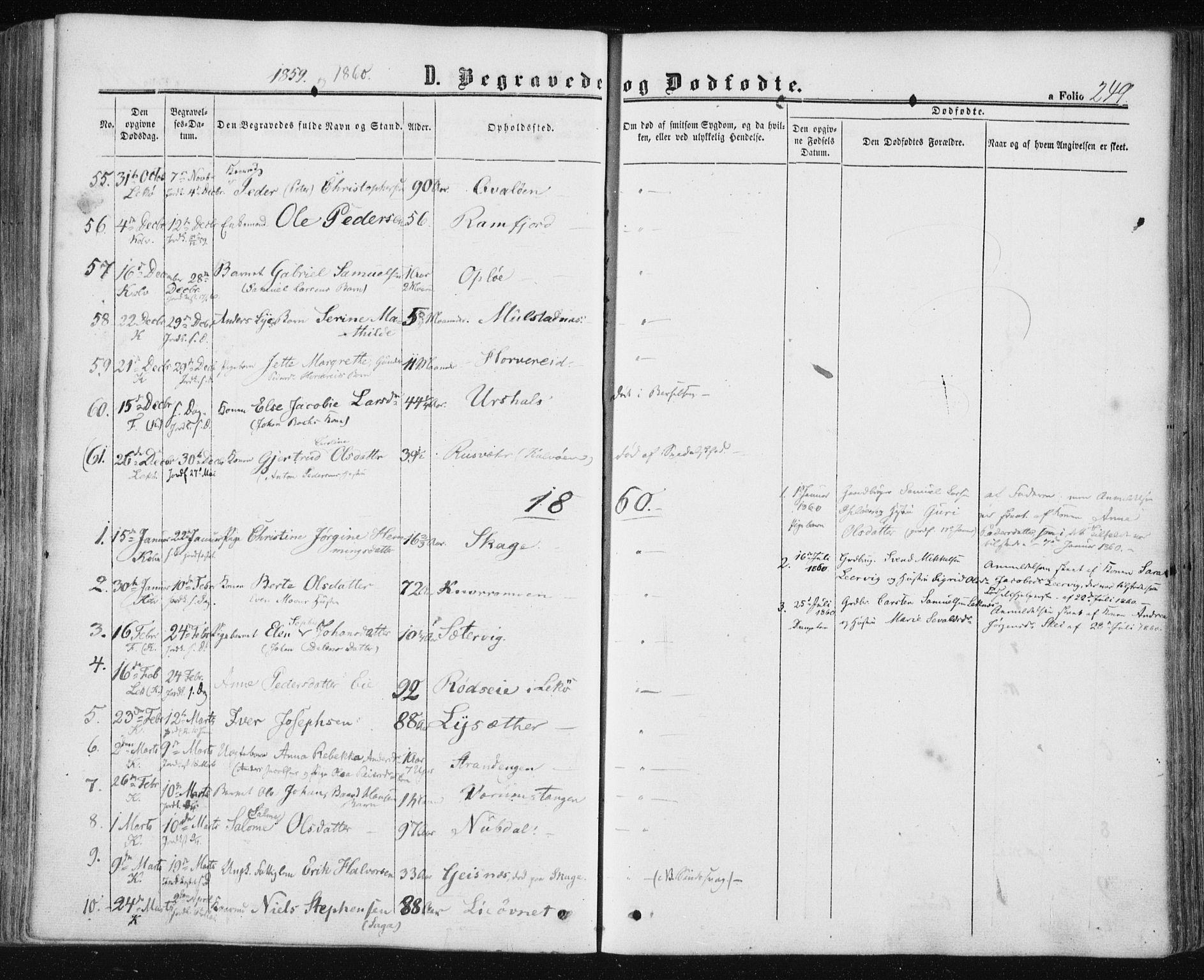 SAT, Ministerialprotokoller, klokkerbøker og fødselsregistre - Nord-Trøndelag, 780/L0641: Ministerialbok nr. 780A06, 1857-1874, s. 249