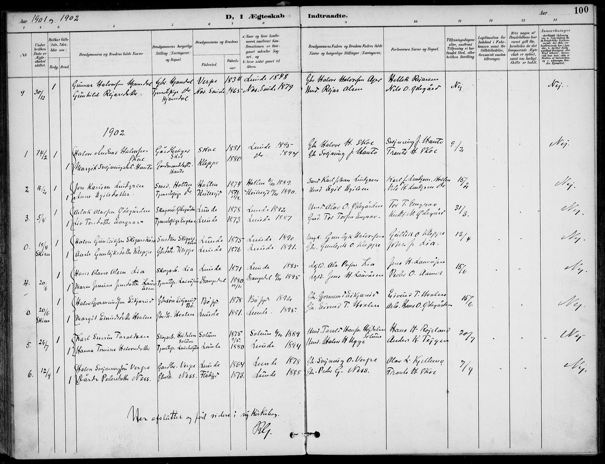 SAKO, Lunde kirkebøker, F/Fa/L0003: Ministerialbok nr. I 3, 1893-1902, s. 100