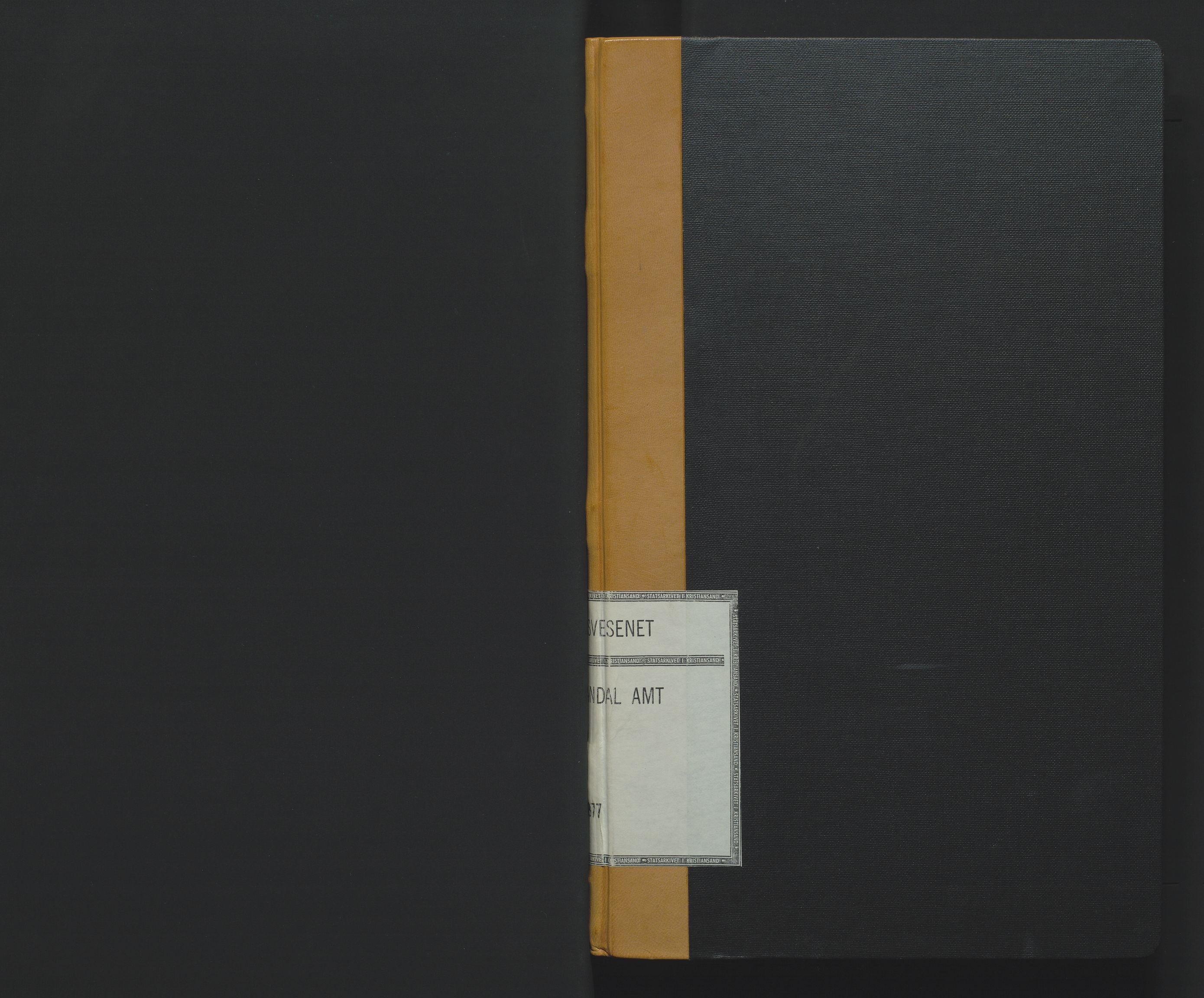 SAK, Utskiftningsformannen i Lister og Mandal amt, F/Fa/Faa/L0012: Utskiftningsprotokoll med register nr 12, 1876-1877