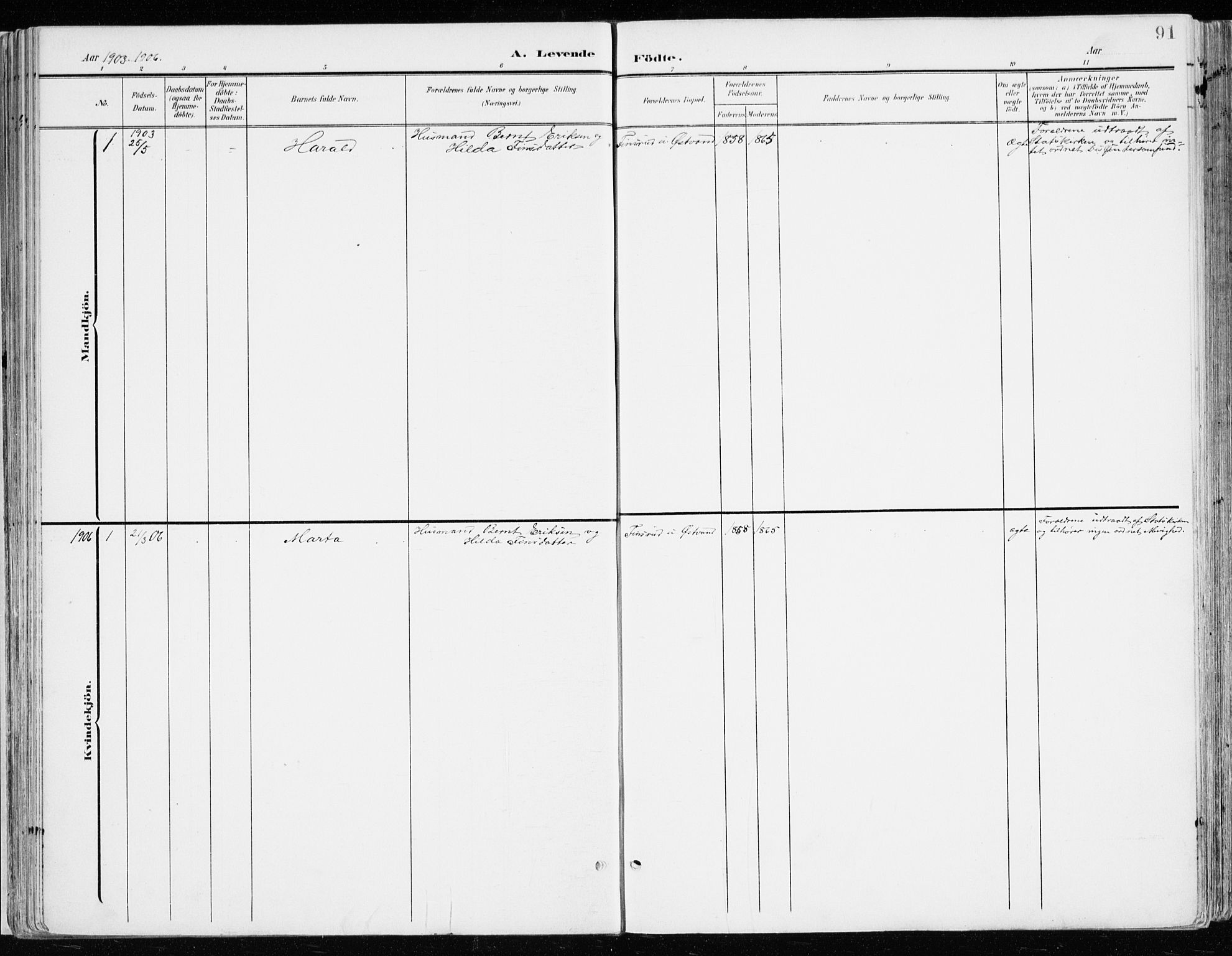SAH, Nord-Odal prestekontor, Ministerialbok nr. 9, 1902-1926, s. 91