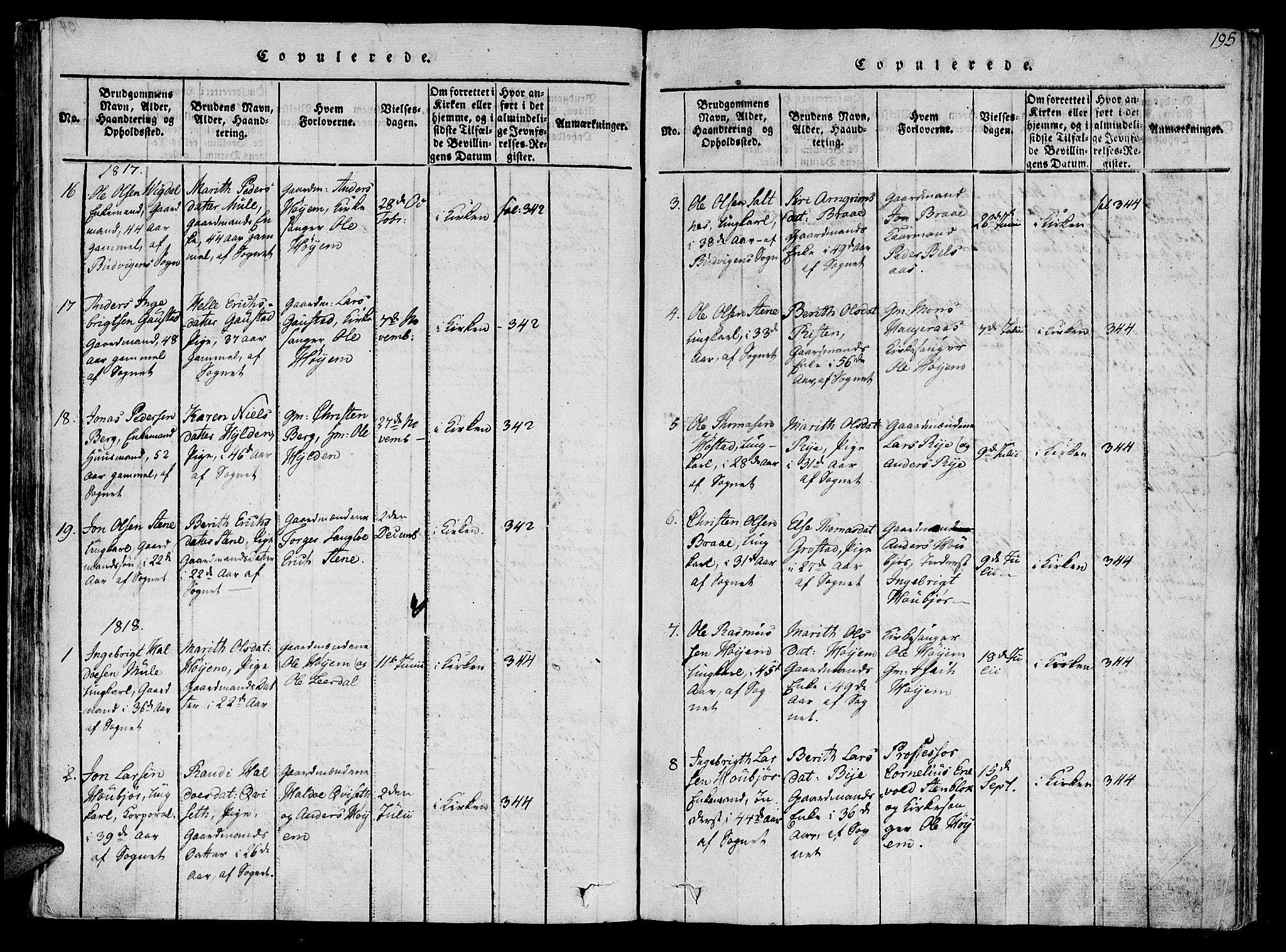 SAT, Ministerialprotokoller, klokkerbøker og fødselsregistre - Sør-Trøndelag, 612/L0372: Ministerialbok nr. 612A06 /1, 1816-1828, s. 195