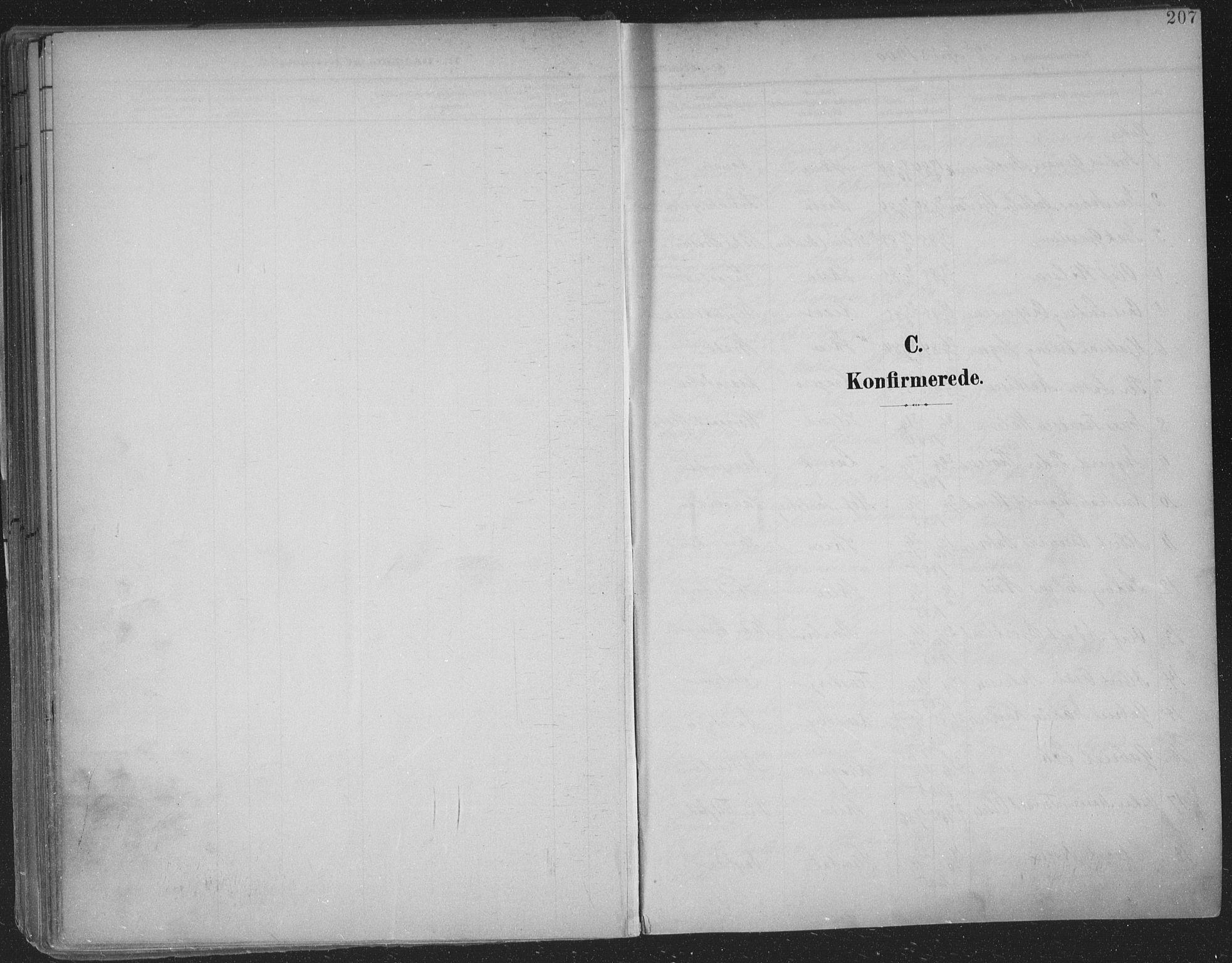 SAKO, Skien kirkebøker, F/Fa/L0011: Ministerialbok nr. 11, 1900-1907, s. 207