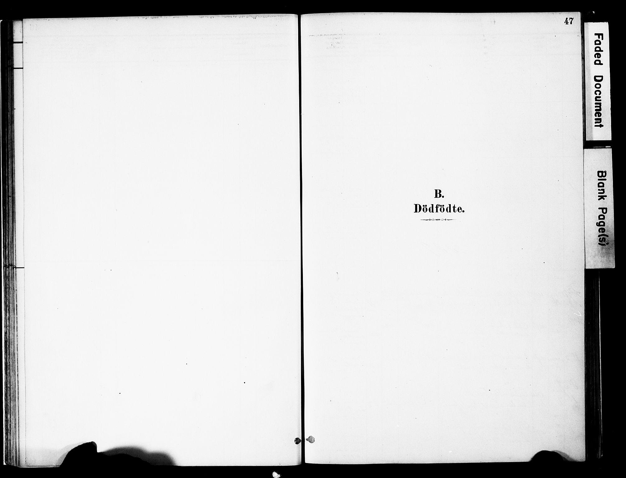 SAH, Vestre Slidre prestekontor, Ministerialbok nr. 5, 1881-1912, s. 47