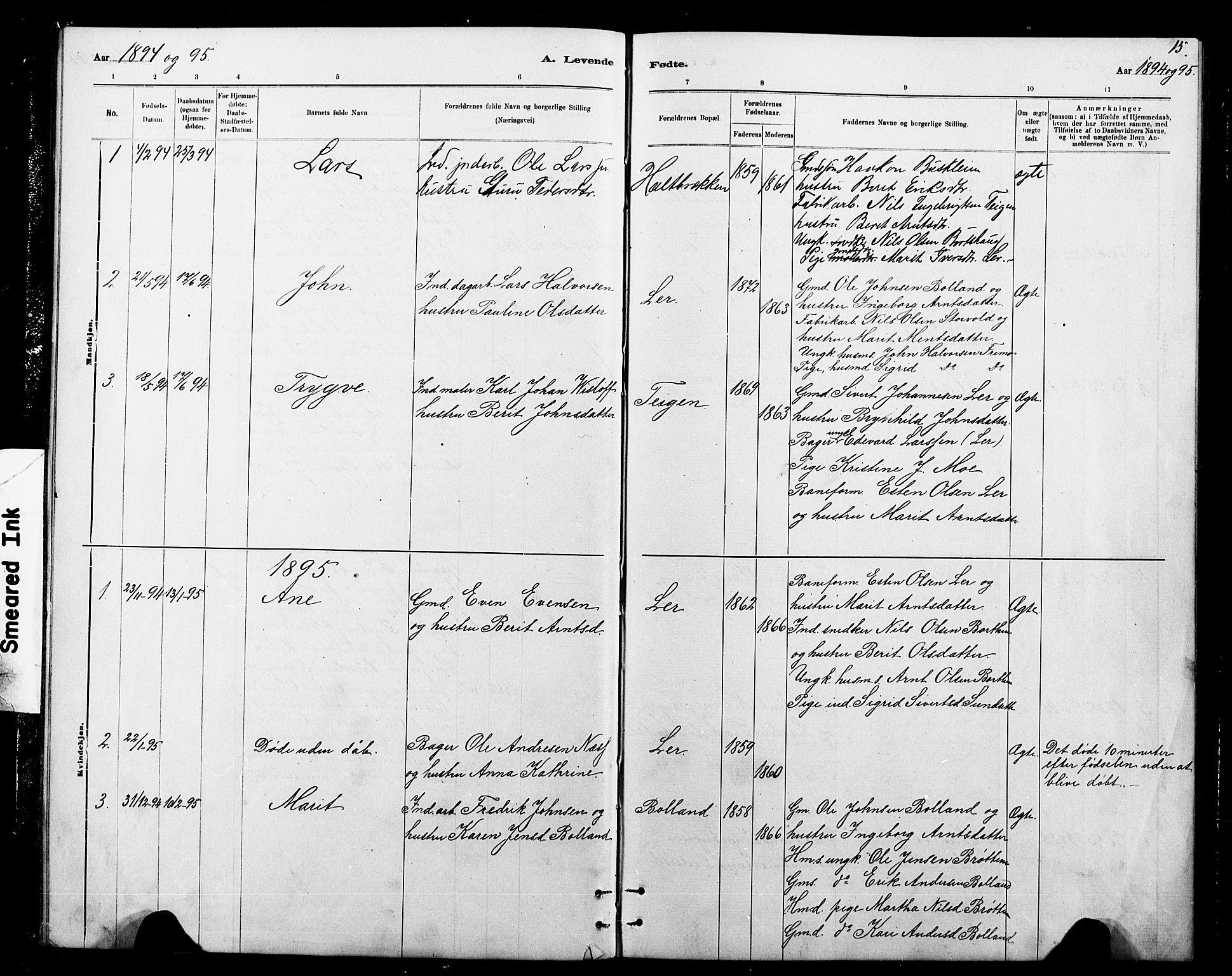 SAT, Ministerialprotokoller, klokkerbøker og fødselsregistre - Sør-Trøndelag, 693/L1123: Klokkerbok nr. 693C04, 1887-1910, s. 15