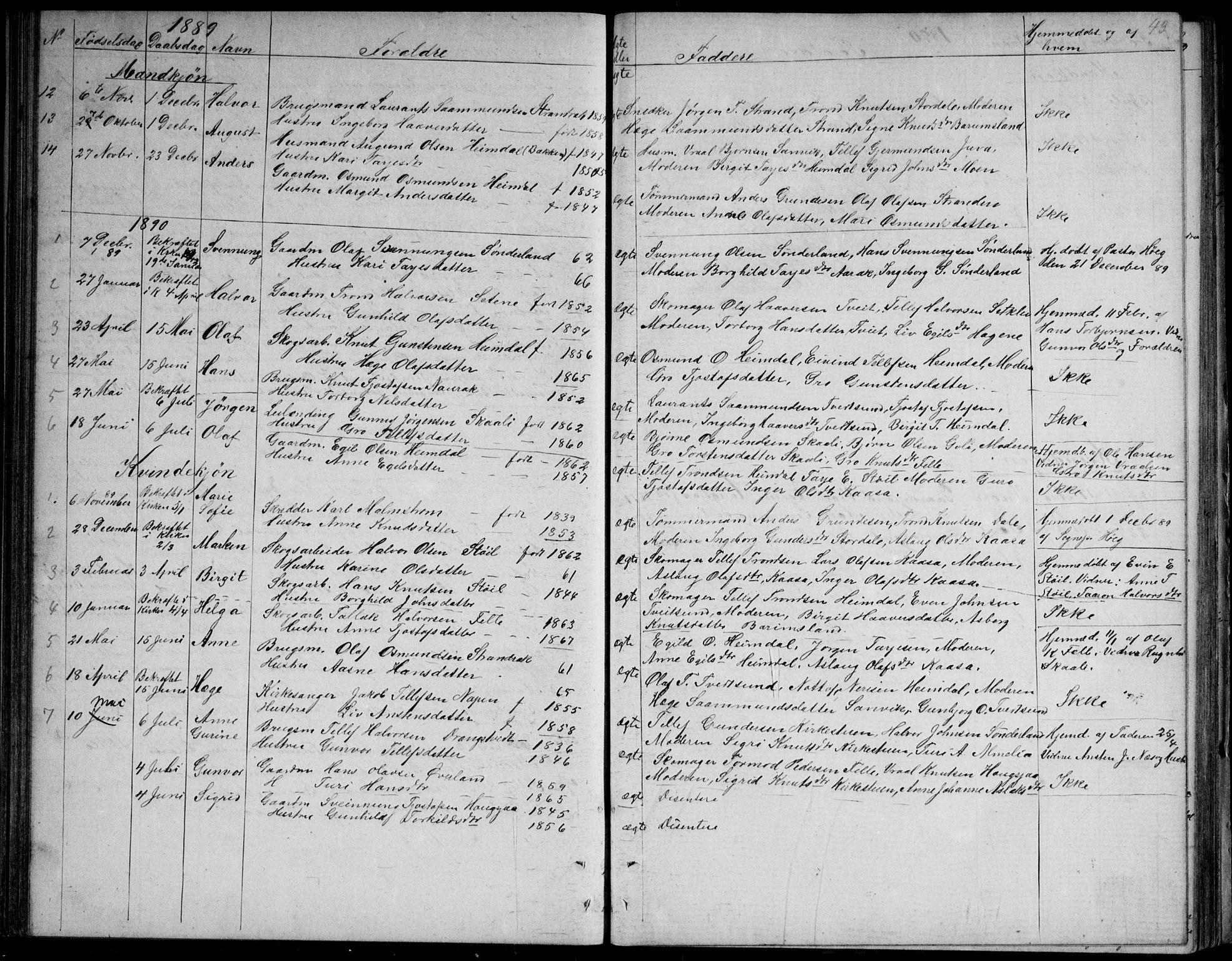 SAKO, Nissedal kirkebøker, G/Gb/L0002: Klokkerbok nr. II 2, 1863-1892, s. 43