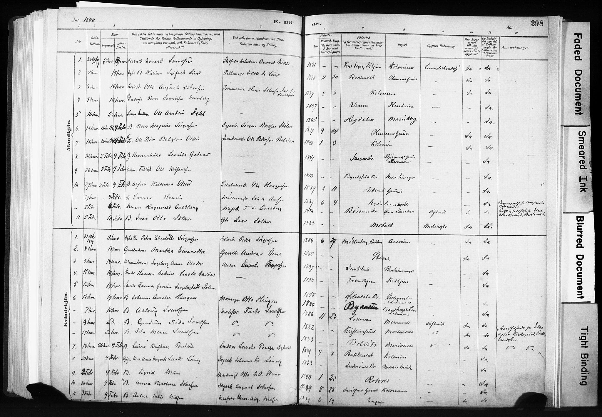 SAT, Ministerialprotokoller, klokkerbøker og fødselsregistre - Sør-Trøndelag, 606/L0300: Ministerialbok nr. 606A15, 1886-1893, s. 298