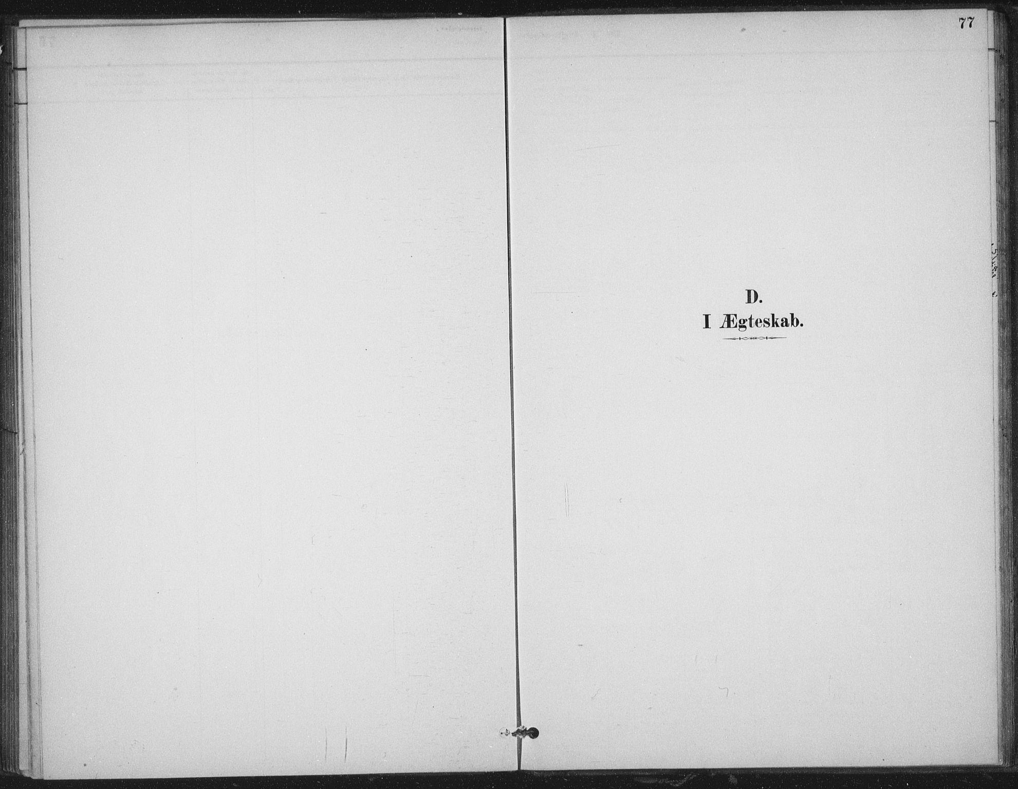 SAT, Ministerialprotokoller, klokkerbøker og fødselsregistre - Nord-Trøndelag, 702/L0023: Ministerialbok nr. 702A01, 1883-1897, s. 77
