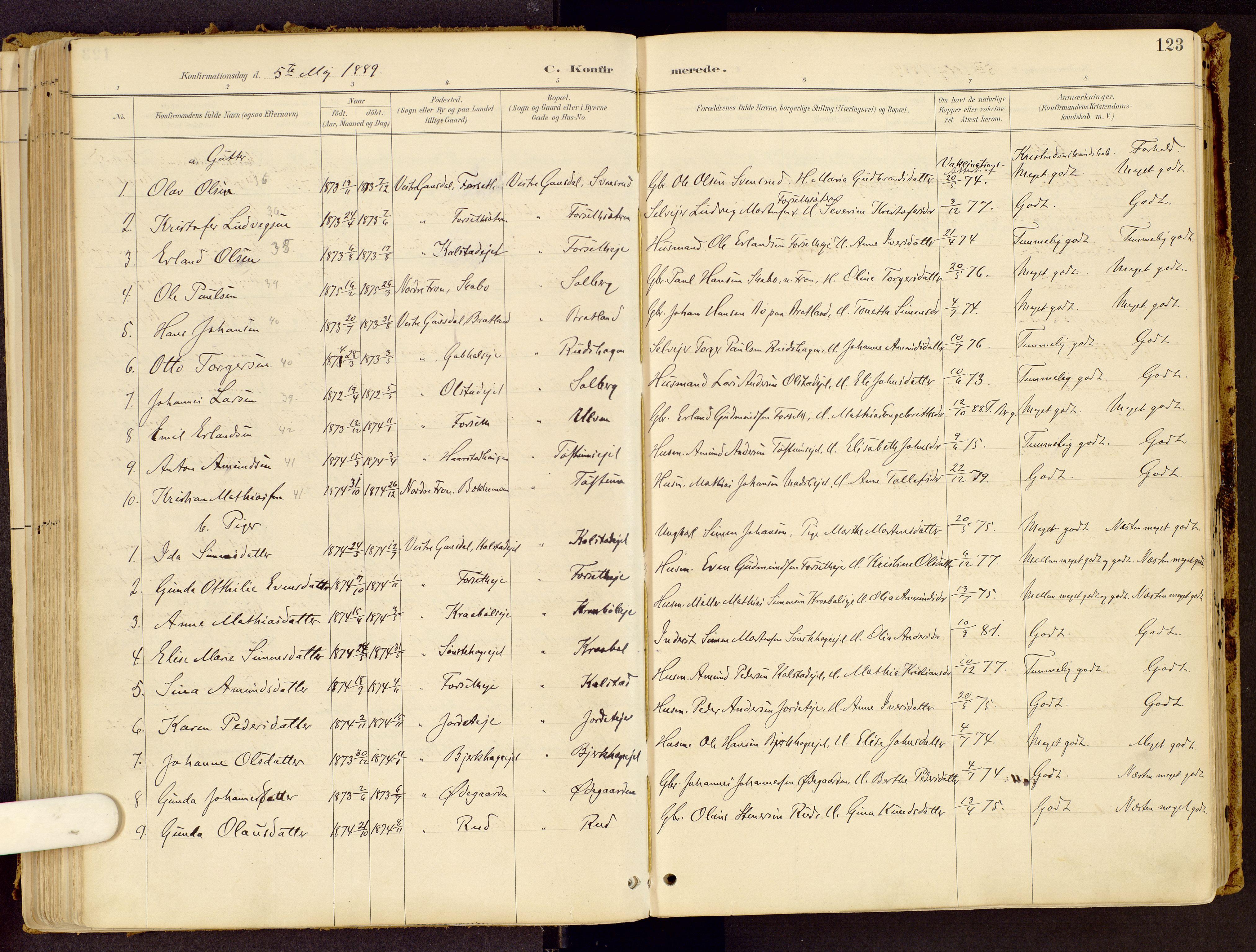 SAH, Vestre Gausdal prestekontor, Ministerialbok nr. 1, 1887-1914, s. 123