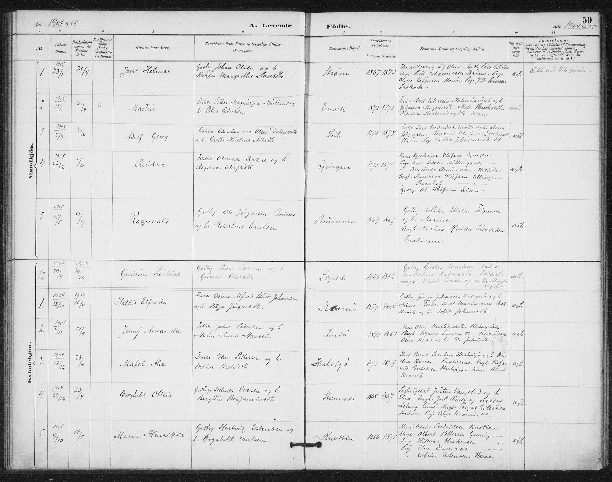 SAT, Ministerialprotokoller, klokkerbøker og fødselsregistre - Nord-Trøndelag, 772/L0603: Ministerialbok nr. 772A01, 1885-1912, s. 50