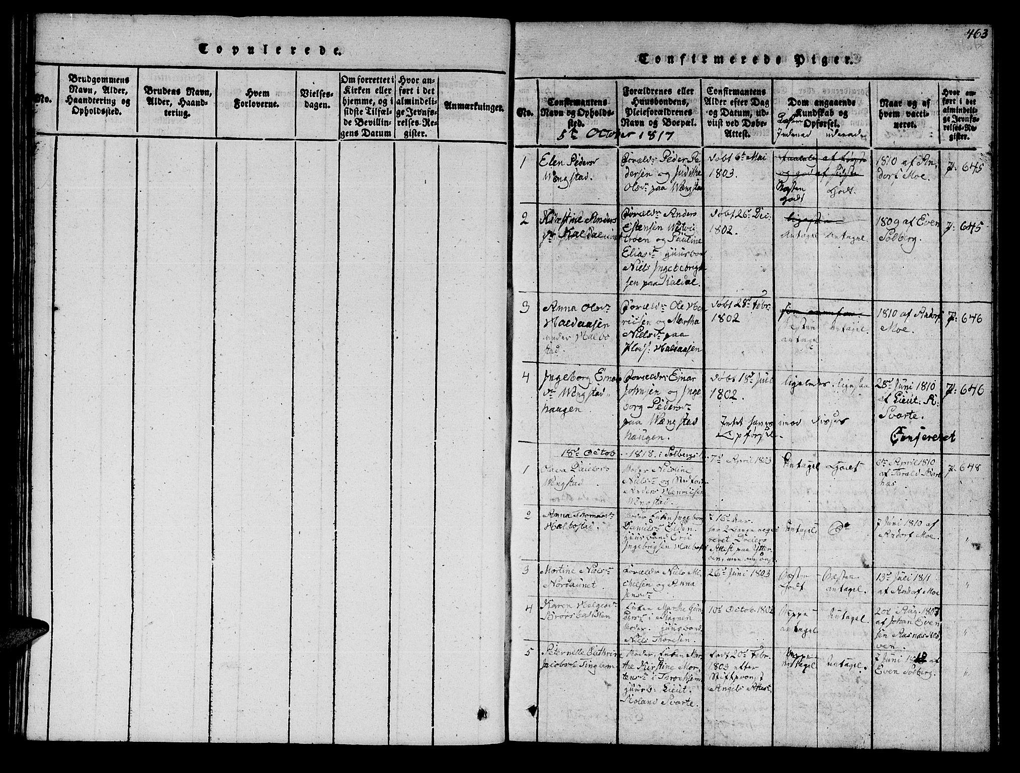 SAT, Ministerialprotokoller, klokkerbøker og fødselsregistre - Nord-Trøndelag, 742/L0411: Klokkerbok nr. 742C02, 1817-1825, s. 462-463