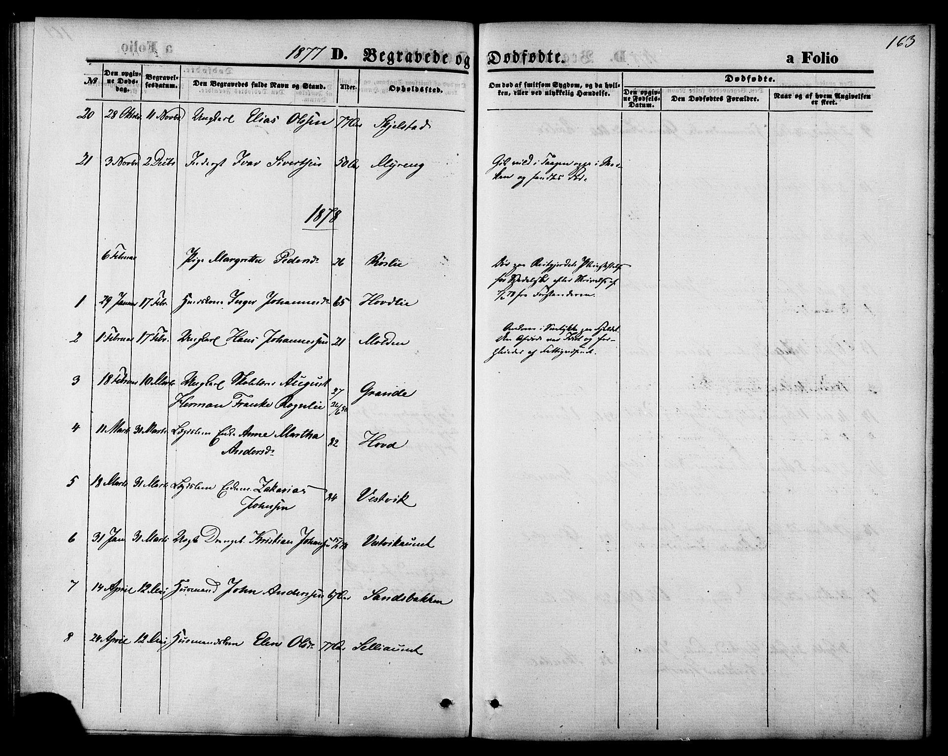 SAT, Ministerialprotokoller, klokkerbøker og fødselsregistre - Nord-Trøndelag, 744/L0419: Ministerialbok nr. 744A03, 1867-1881, s. 163
