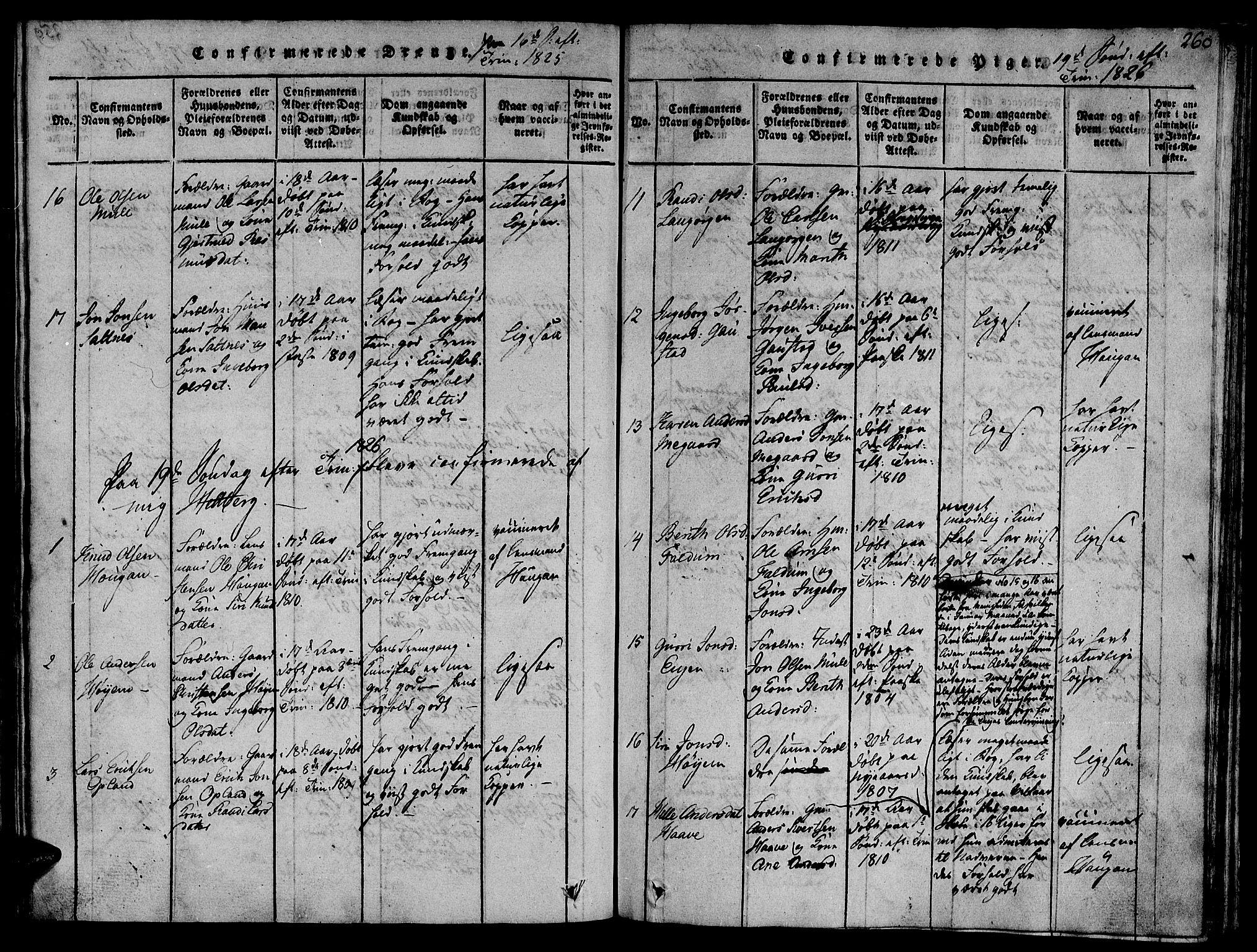 SAT, Ministerialprotokoller, klokkerbøker og fødselsregistre - Sør-Trøndelag, 612/L0372: Ministerialbok nr. 612A06 /1, 1816-1828, s. 260