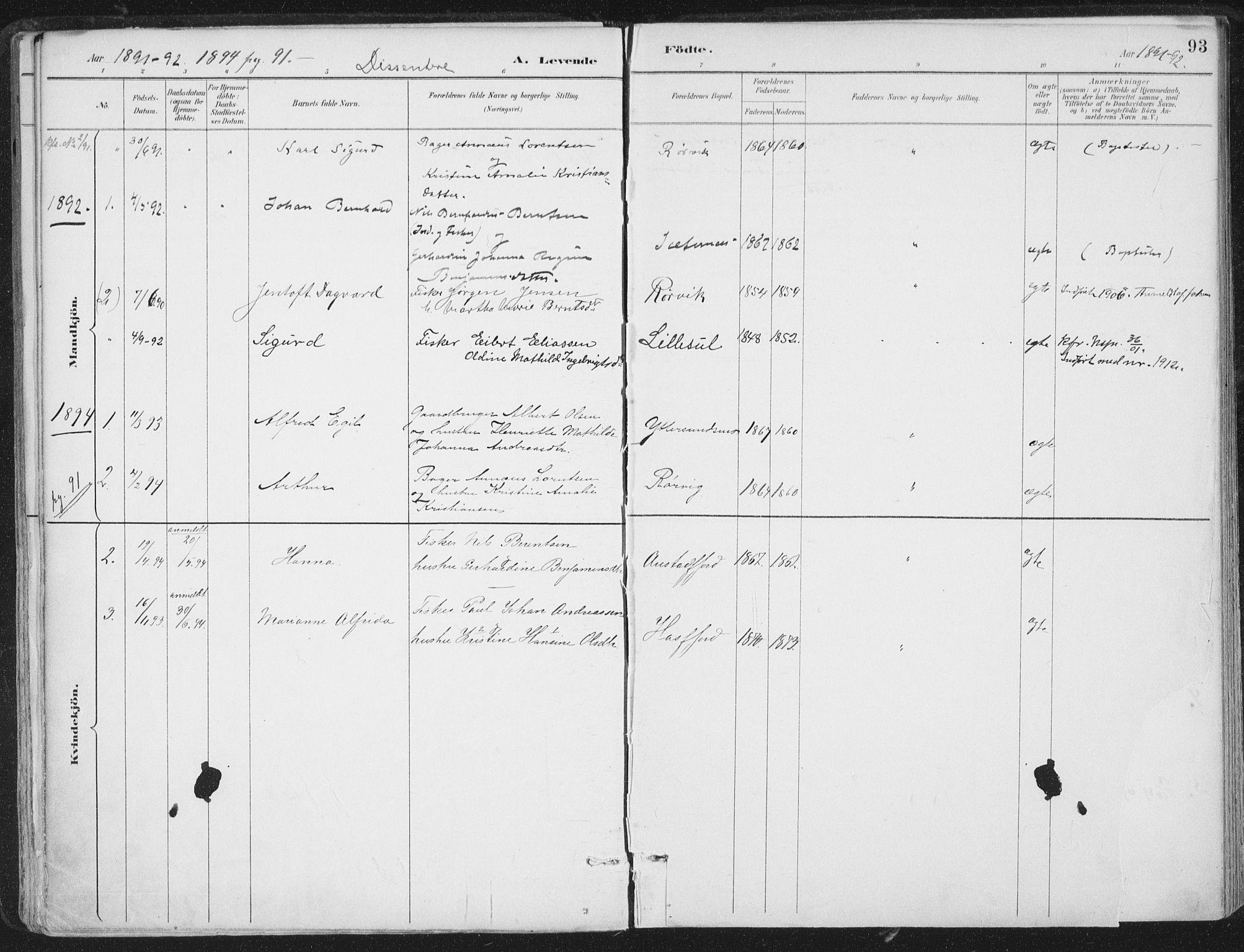 SAT, Ministerialprotokoller, klokkerbøker og fødselsregistre - Nord-Trøndelag, 786/L0687: Ministerialbok nr. 786A03, 1888-1898, s. 93