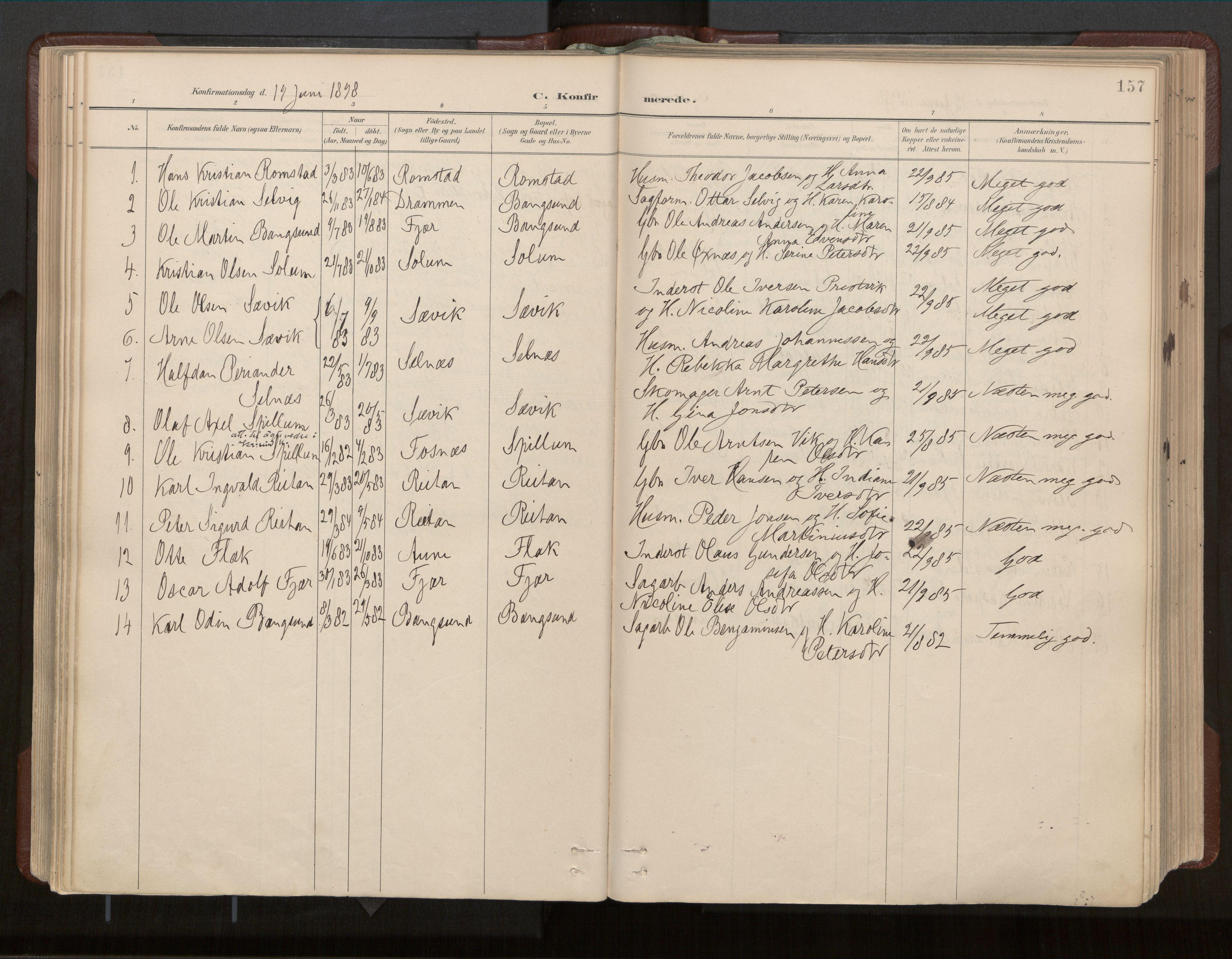 SAT, Ministerialprotokoller, klokkerbøker og fødselsregistre - Nord-Trøndelag, 770/L0589: Ministerialbok nr. 770A03, 1887-1929, s. 157