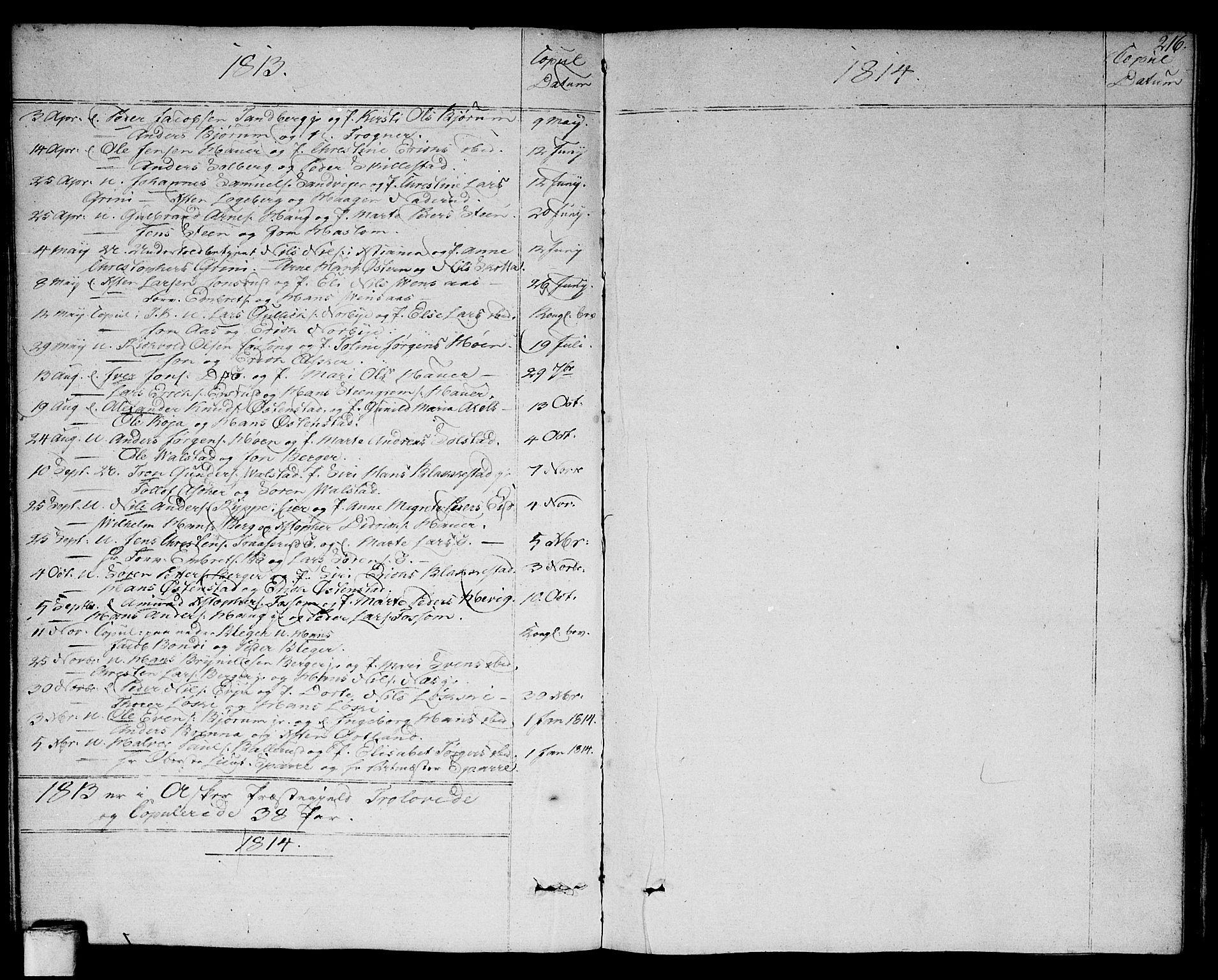SAO, Asker prestekontor Kirkebøker, F/Fa/L0005: Ministerialbok nr. I 5, 1807-1813, s. 216