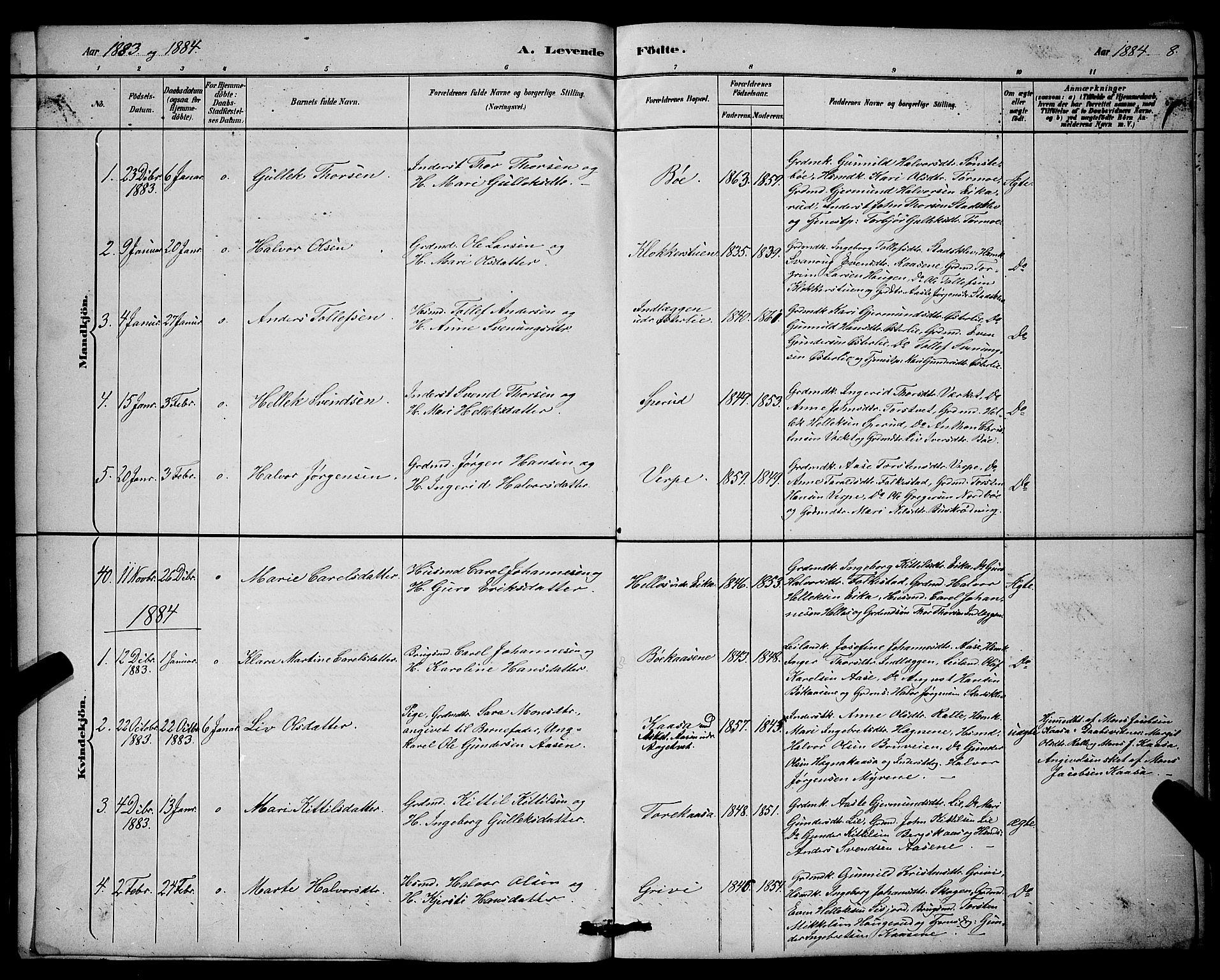 SAKO, Bø kirkebøker, G/Ga/L0005: Klokkerbok nr. 5, 1883-1897, s. 8