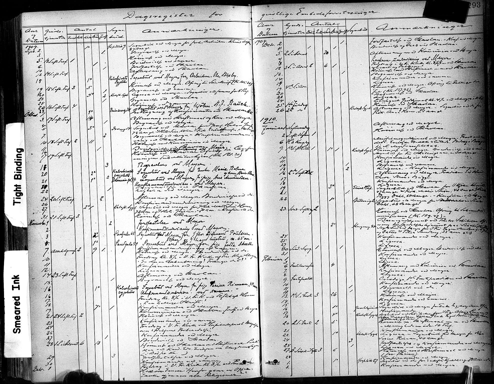 SAT, Ministerialprotokoller, klokkerbøker og fødselsregistre - Sør-Trøndelag, 602/L0120: Ministerialbok nr. 602A18, 1880-1913, s. 293