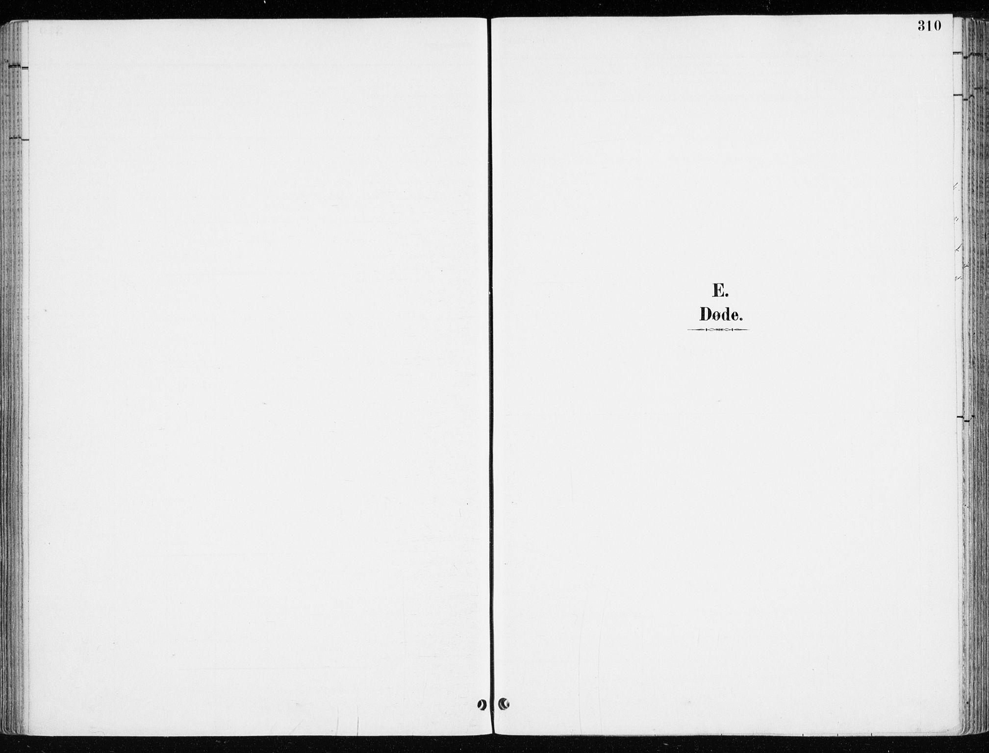SAH, Løten prestekontor, K/Ka/L0010: Ministerialbok nr. 10, 1892-1907, s. 310