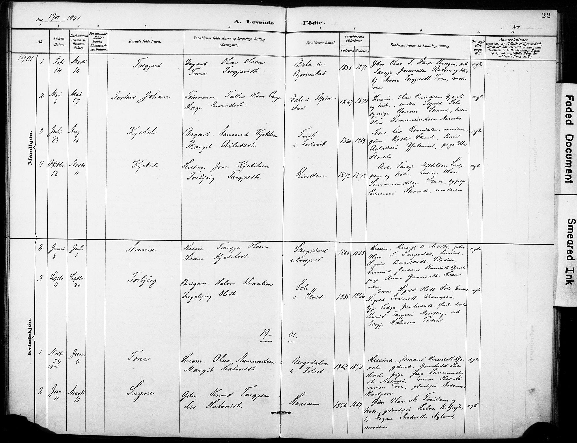 SAKO, Fyresdal kirkebøker, F/Fb/L0003: Ministerialbok nr. II 3, 1887-1903, s. 22