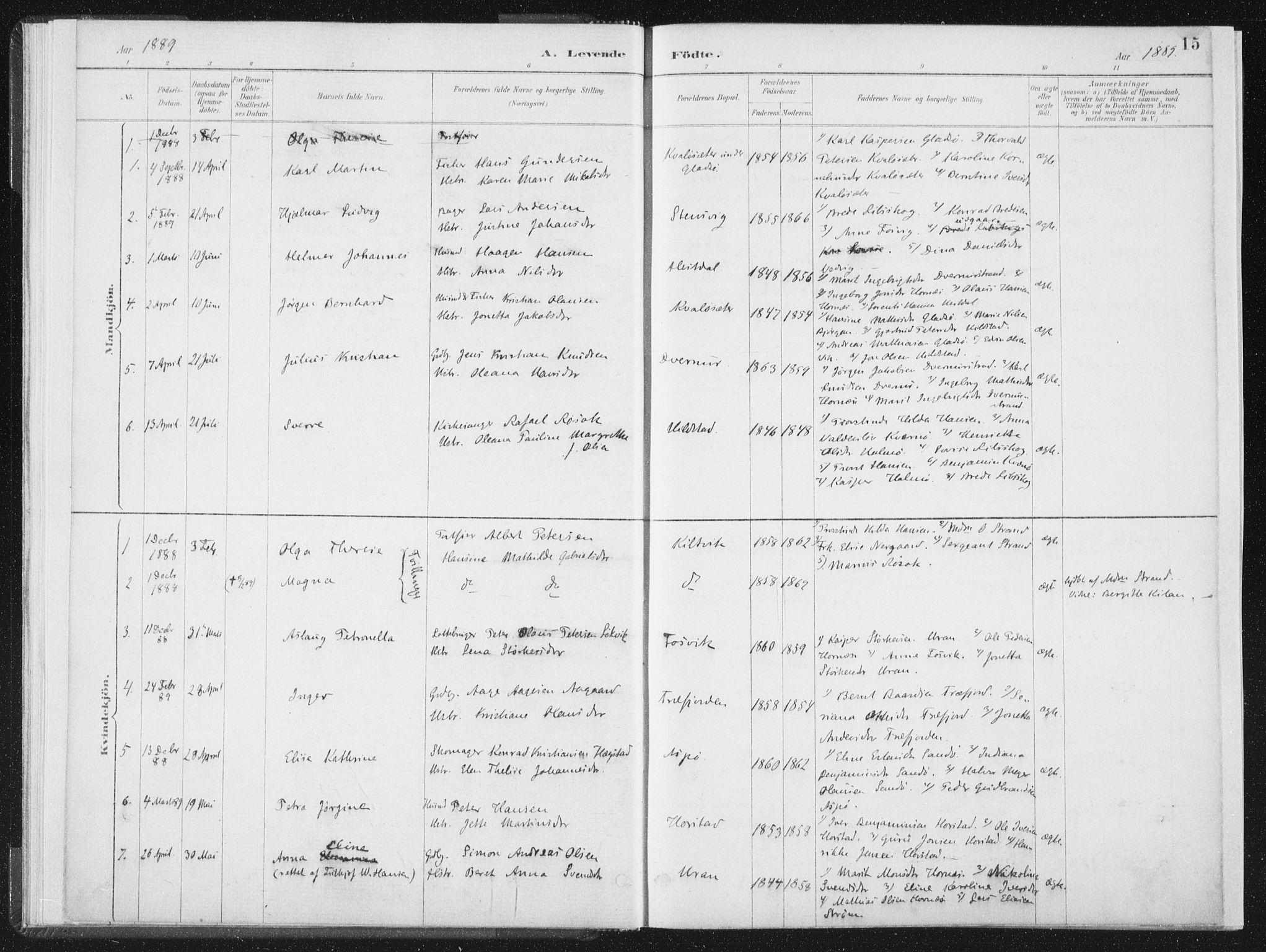 SAT, Ministerialprotokoller, klokkerbøker og fødselsregistre - Nord-Trøndelag, 771/L0597: Ministerialbok nr. 771A04, 1885-1910, s. 15
