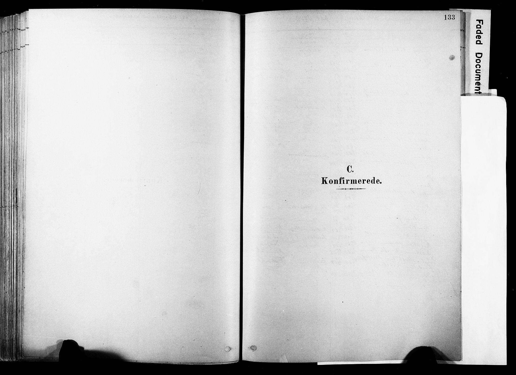 SAKO, Strømsø kirkebøker, F/Fb/L0006: Ministerialbok nr. II 6, 1879-1910, s. 133