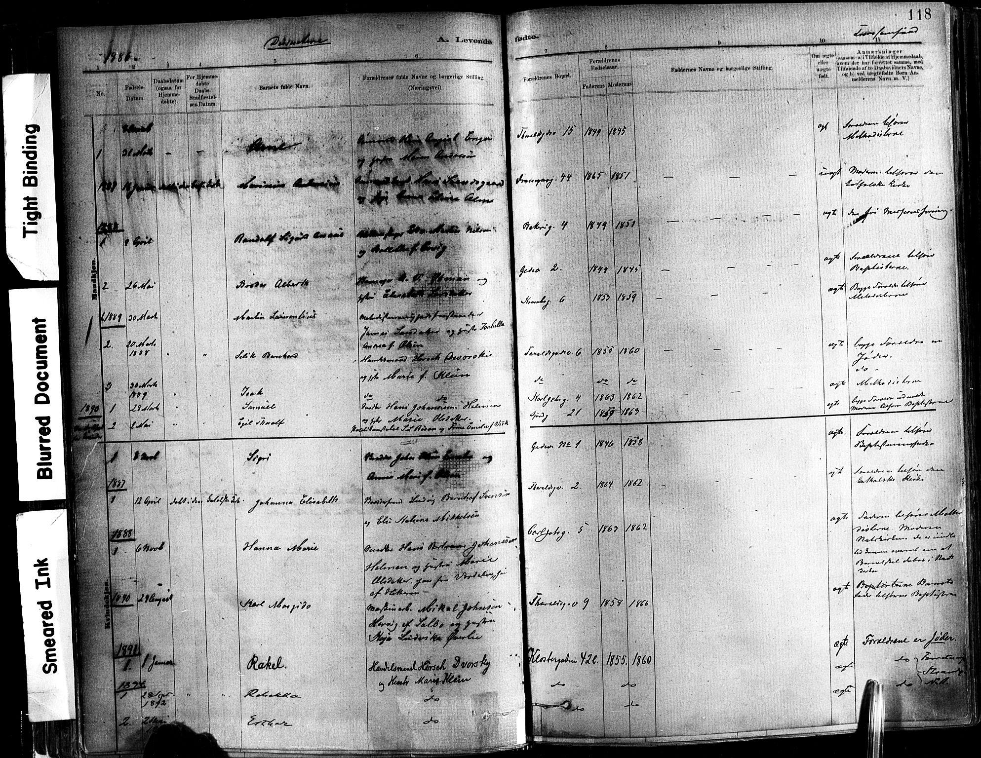 SAT, Ministerialprotokoller, klokkerbøker og fødselsregistre - Sør-Trøndelag, 602/L0119: Ministerialbok nr. 602A17, 1880-1901, s. 118